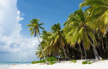Insel Saona in Punta Cana, Dominikanische Republik