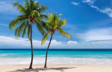 Jamaika, Karibik