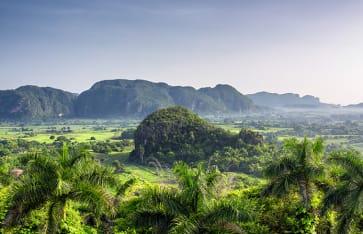 Schöner Blick auf Grünflächen, Bäume und Mogoten im Vinales Valley Kuba