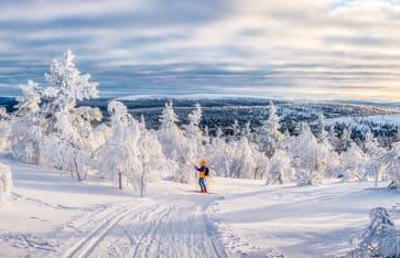 Langlauf, Lappland