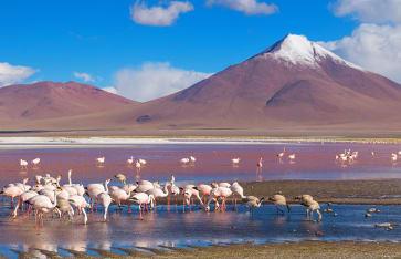 Naturreisen, Chile