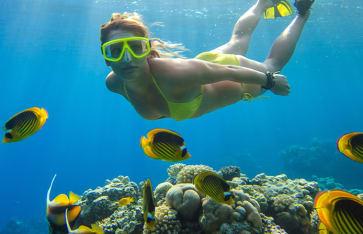 Mädchen taucht in einem tropischen Meer mit Korallen und Fischen, Belize