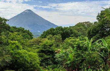 Urwald in Nicaragua