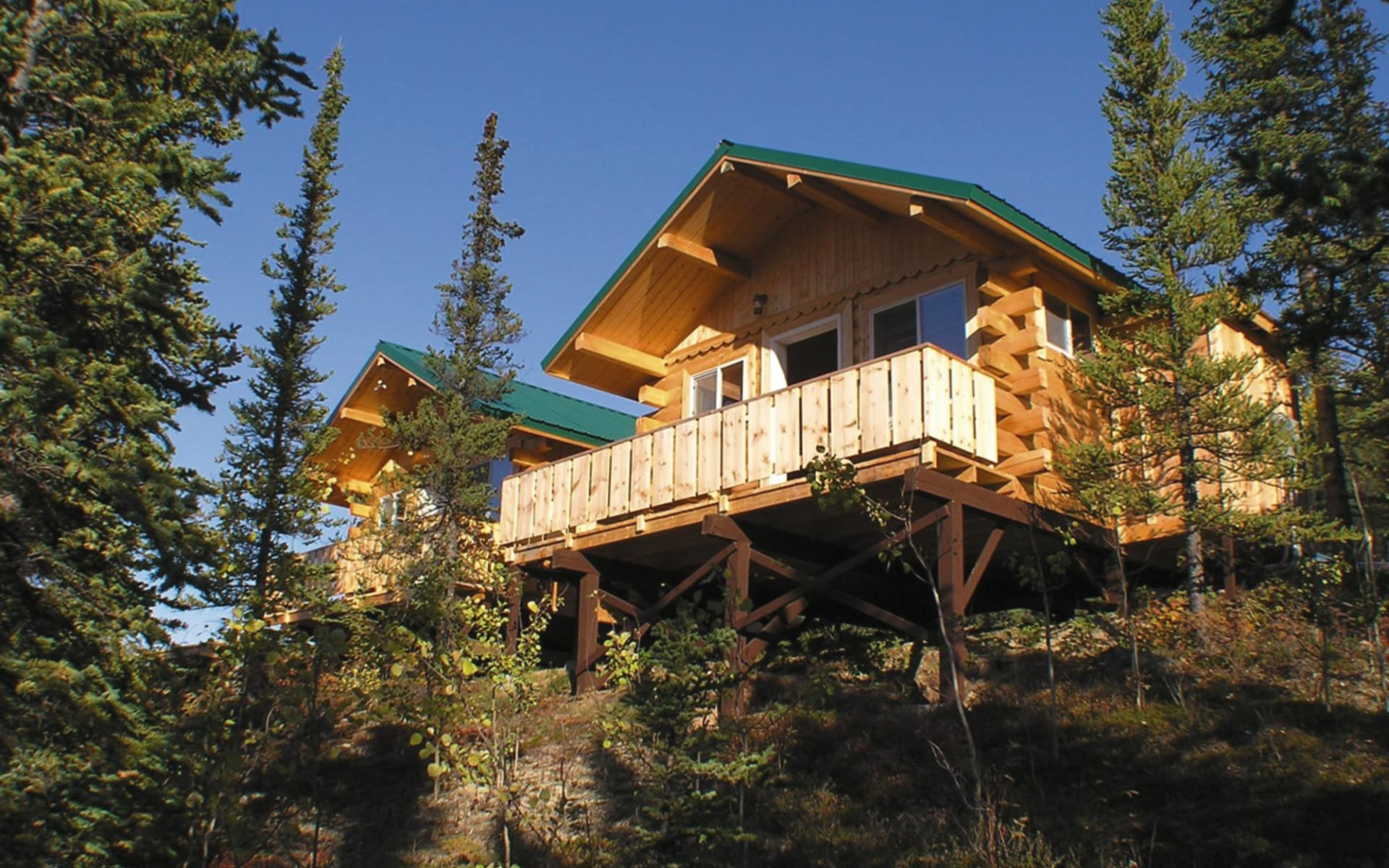 Denali Grizzly Bear Resort in Denali National Park: _ exterior Denali Grizzly Bear Resort - Aussenansicht Cabins