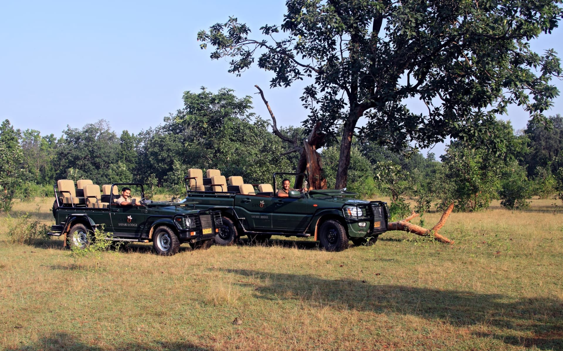 Samode Safari Lodge in Bandhavgarh: