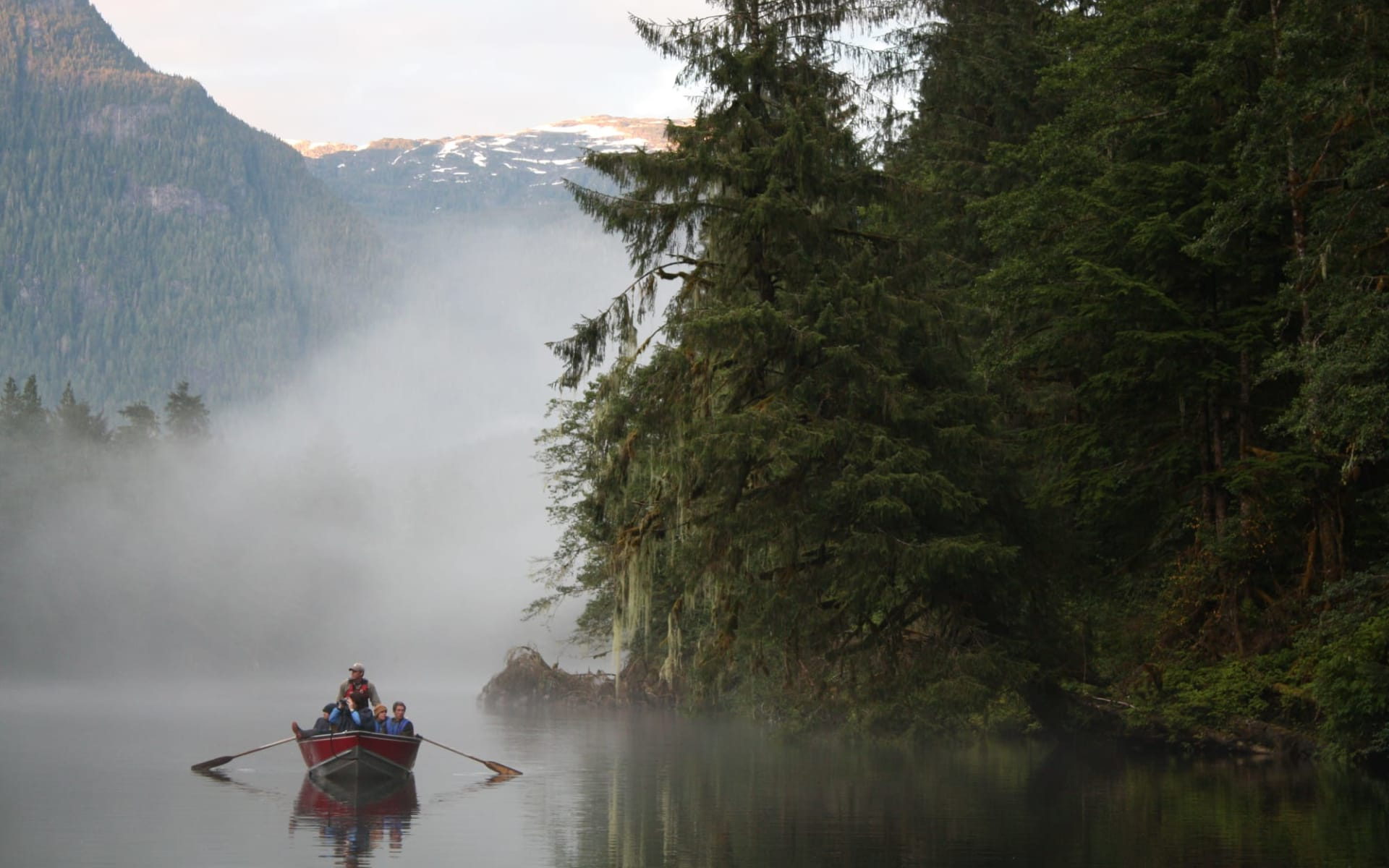 Bärenbeobachtung Great Bear Lodge 4 Tage ab Port Hardy: activities: Great Bear Lodge - Bootstour