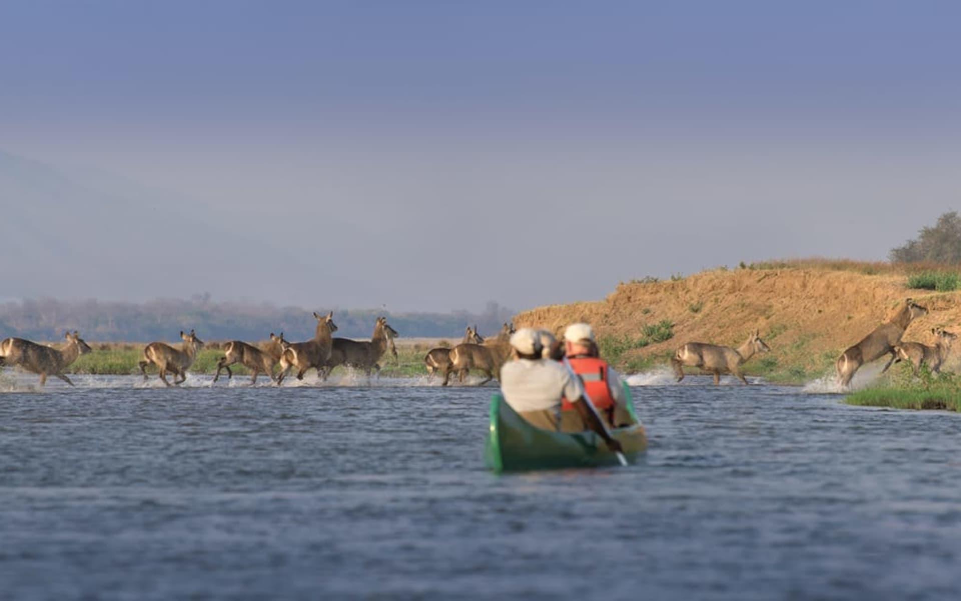 Zambezi Expeditions Camp in Mana Pools Nationalpark:  Zambezi Expeditions - wb_panorama3_2