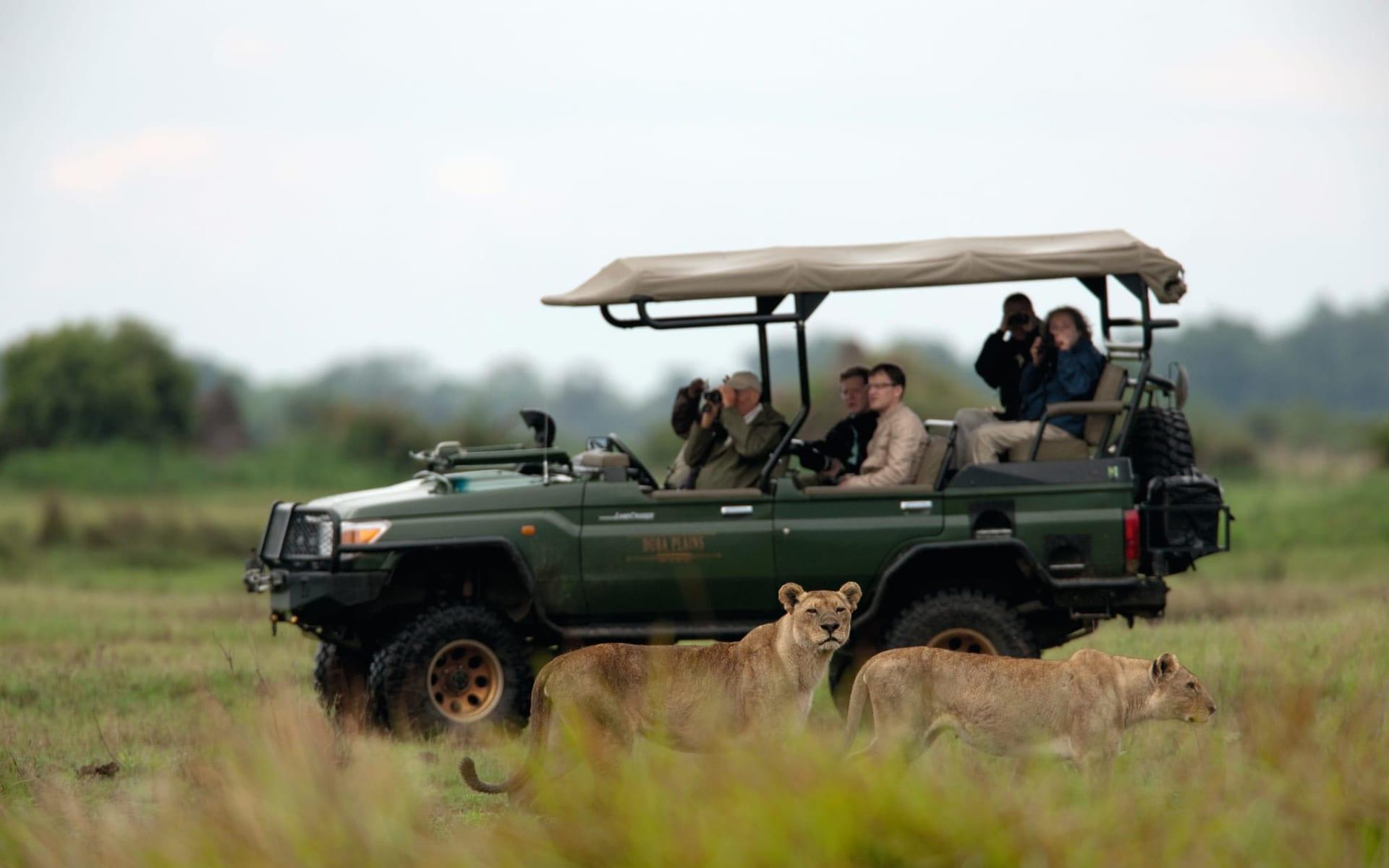 Duba Explorers Camp in Okavango Delta: aktiv Duba Expeditions Camp safari