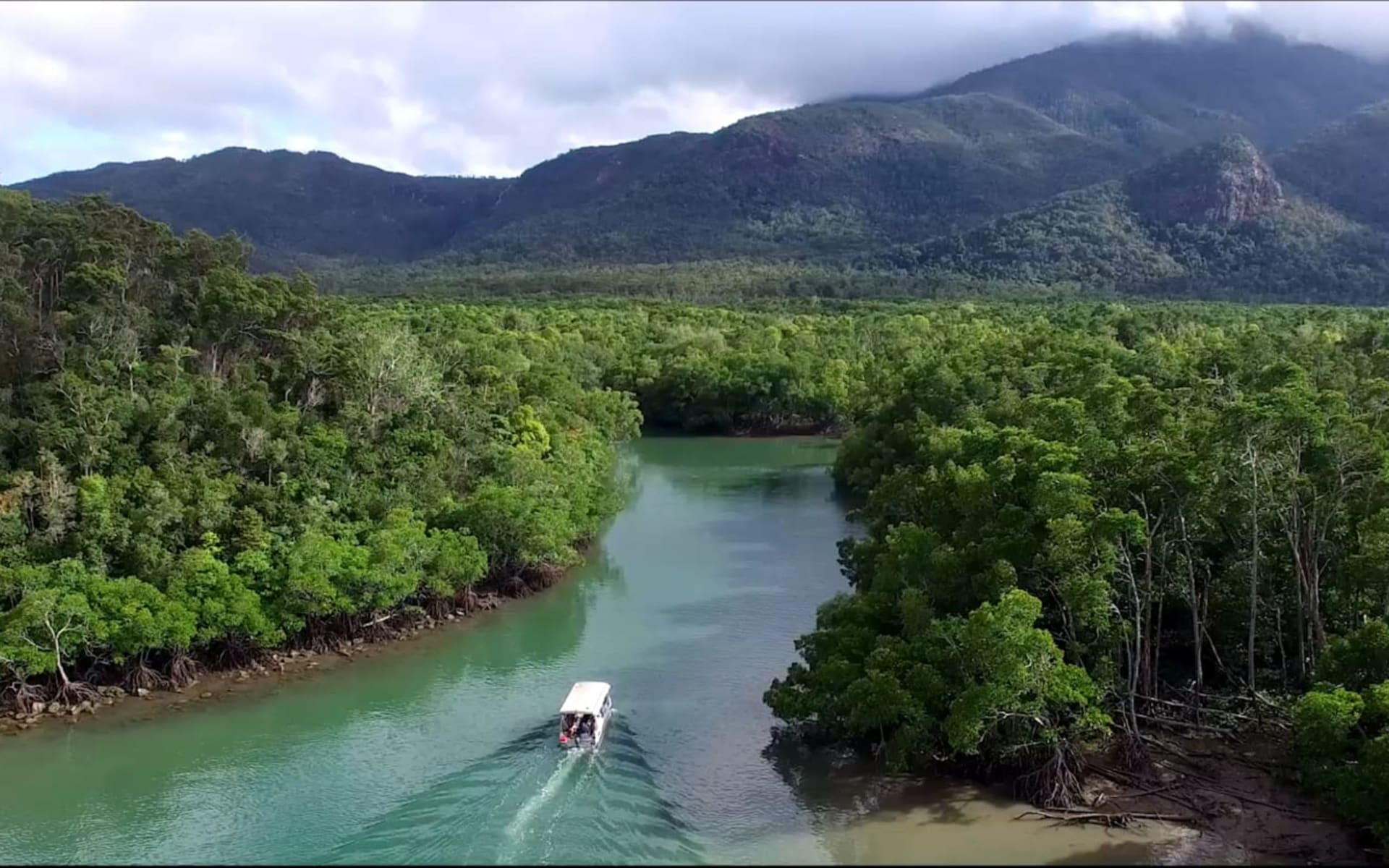 Coral Expeditions / nördliches Barrier Reef ab Cairns: Australia - Queensland - Coral Expeditions Rainforest Tour