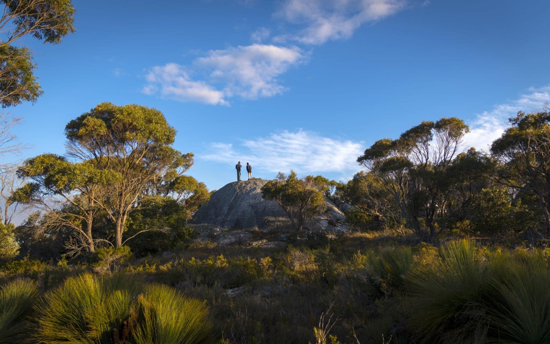 Wukalina Walk ab Launceston: Australia Tasmanien Wukalina Walk Aussichtspunkt