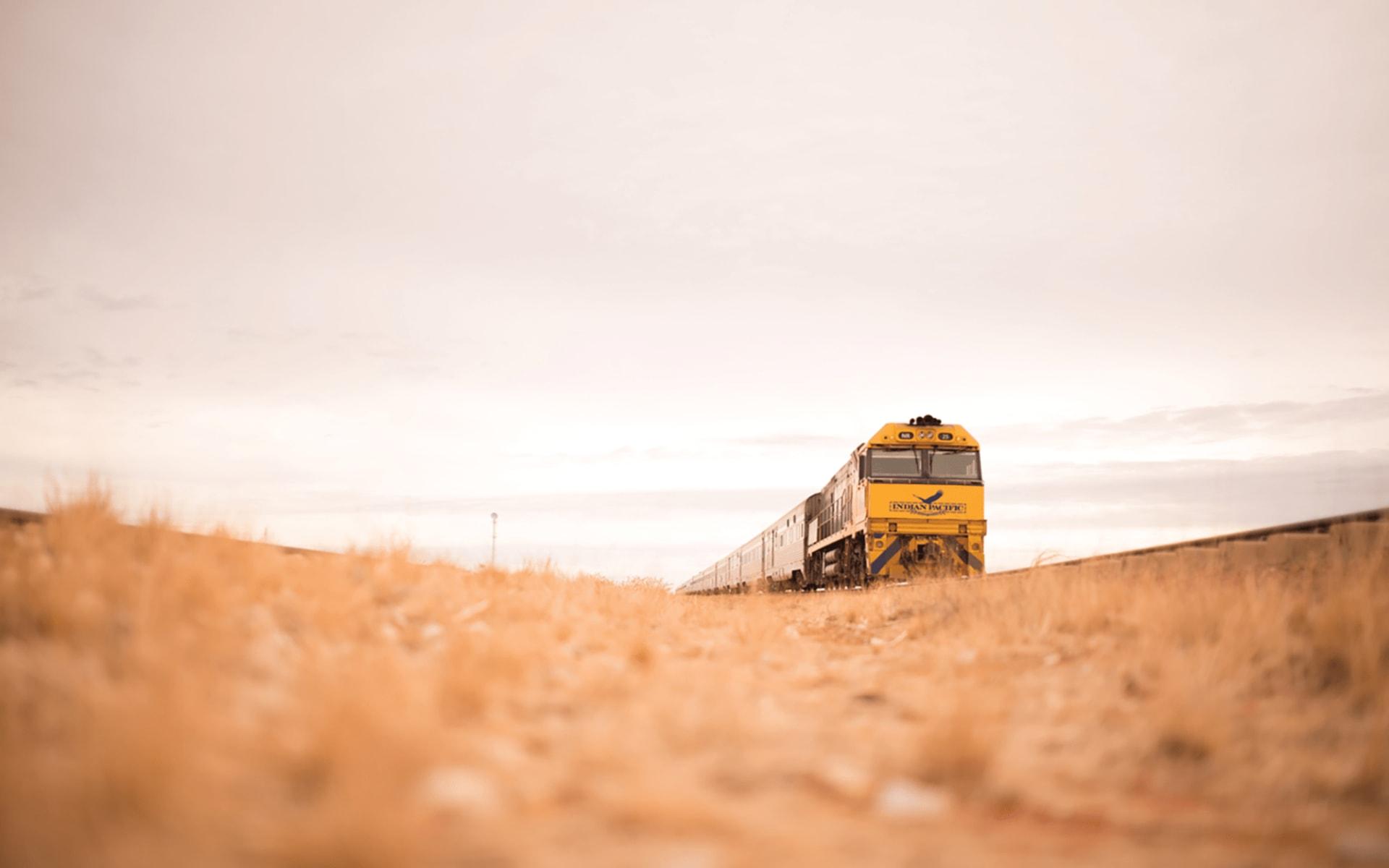 Indian Pacific von Perth nach Adelaide: Australien - Bahnreisen - Indian Pacific auf Grasfläche 2018
