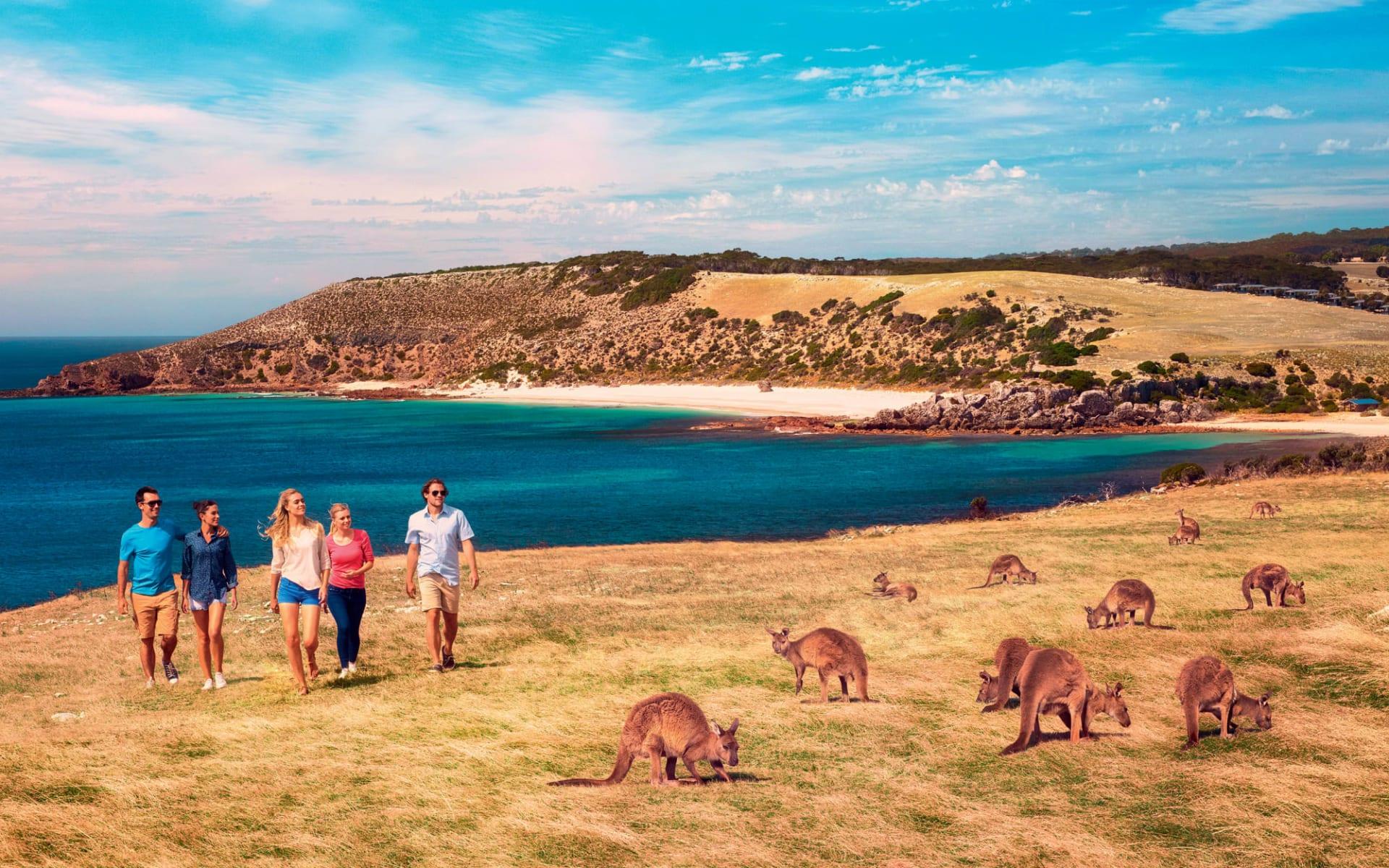 Outback und Kangaroo Island ab Adelaide: Australien - South Australia - Kangaroo Island