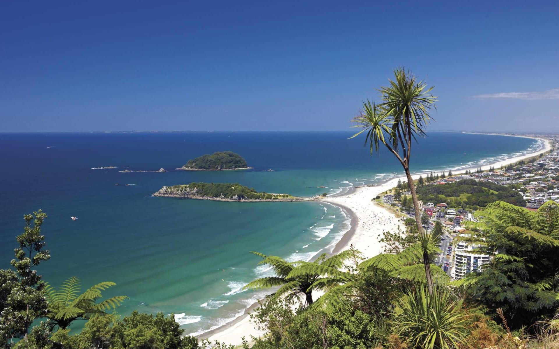 Zauber der Nordinsel ab Auckland: Bay of Islands - Beach