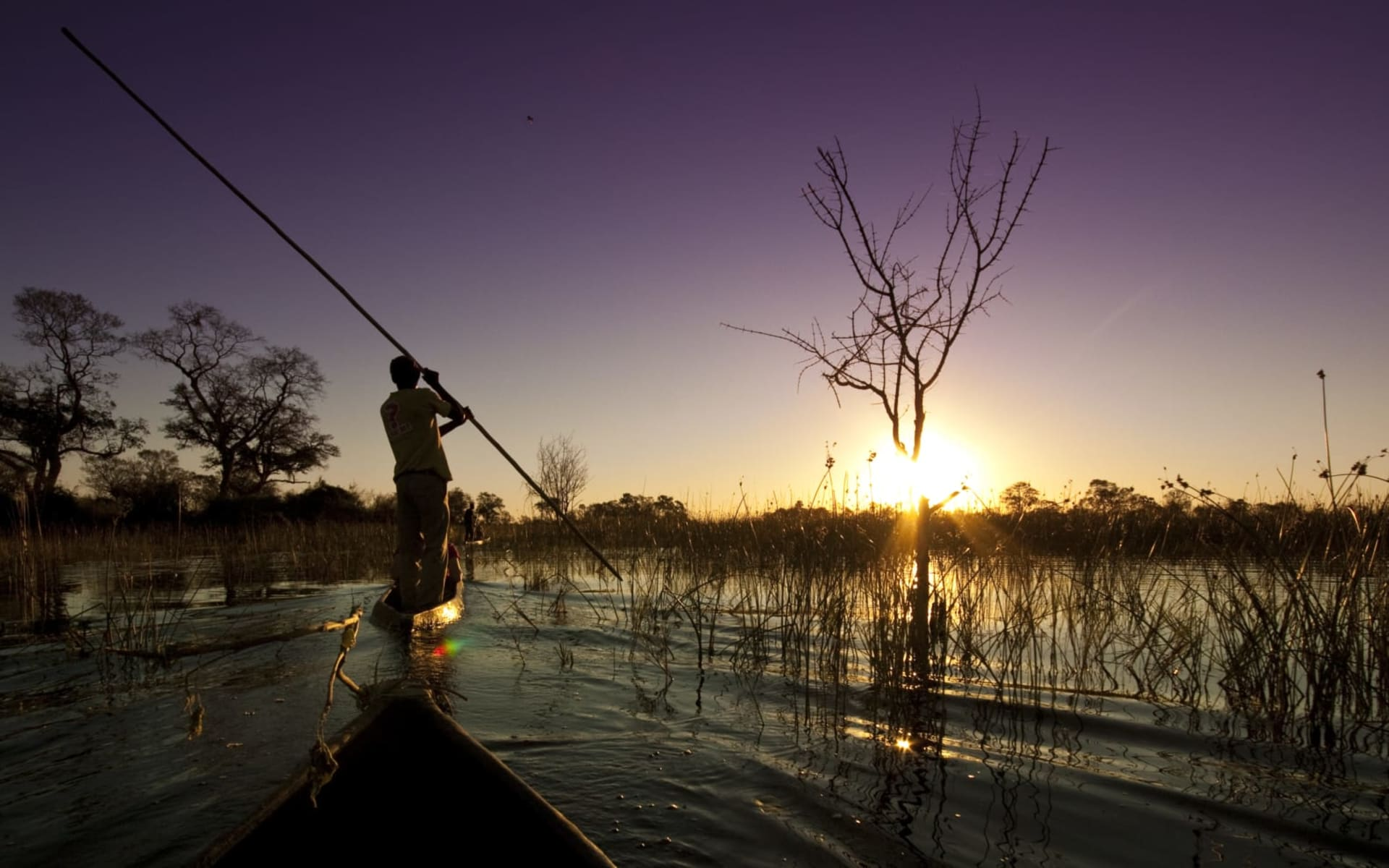 Best of Botswana Lodge Safari ab Kasane: Botswana - Okavango Delta - Mokoro
