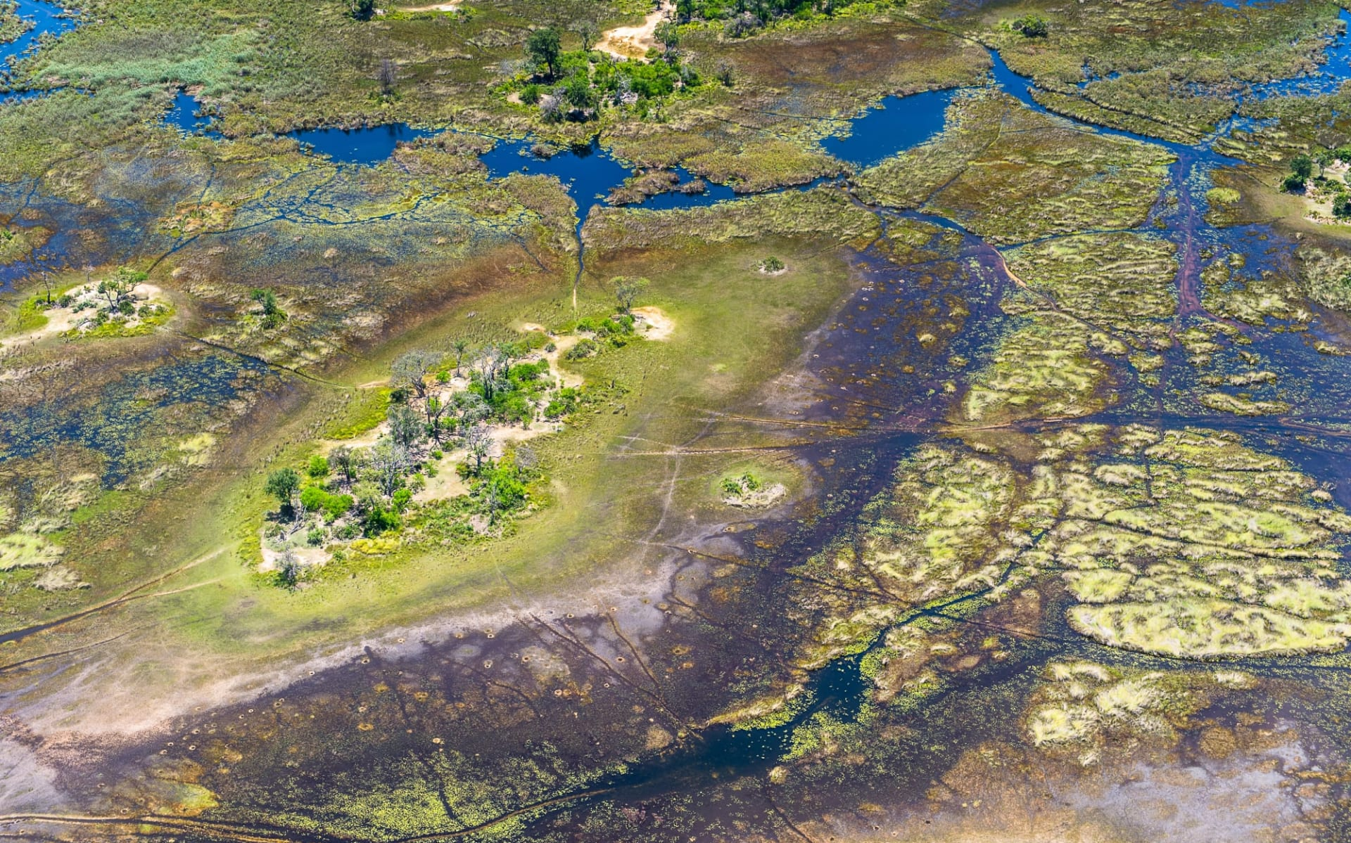 Three Rivers Safari ab Chobe Nationalpark: Botswana - Okavango Delta - Vogelperspektive