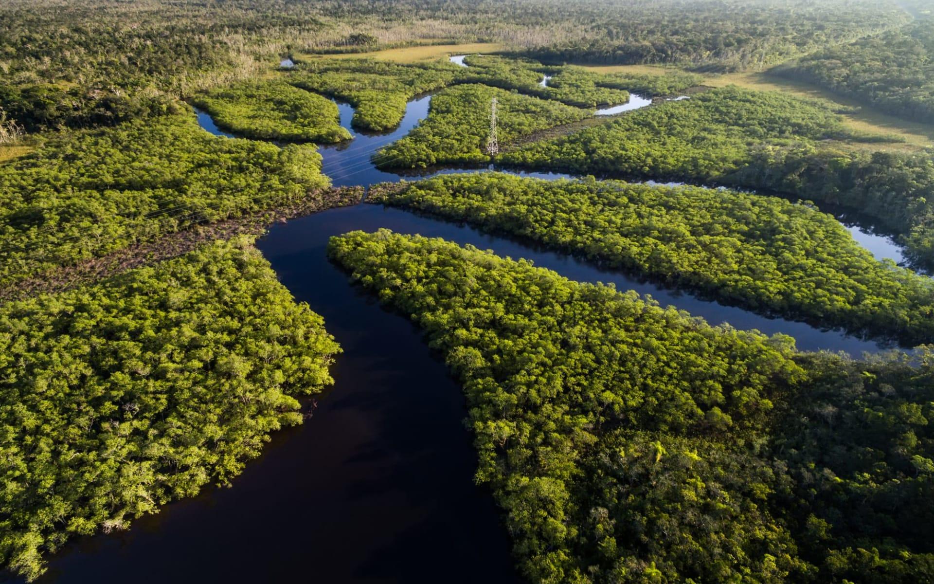 Iberostar / Rio Negro Programm ab Manaus: Brasilien - Amazonas - Fluss Vogelperspektive