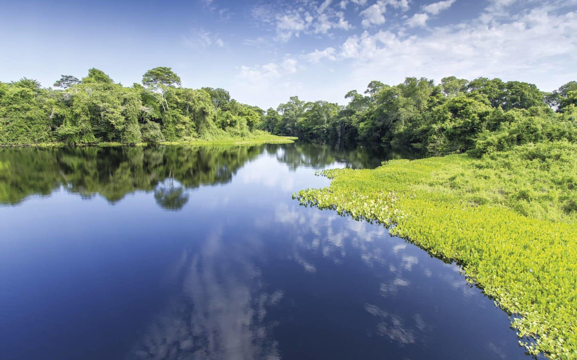 Flussfahrt mit der Tucano ab Manaus: Brasilien - Amazonas - Pantanal