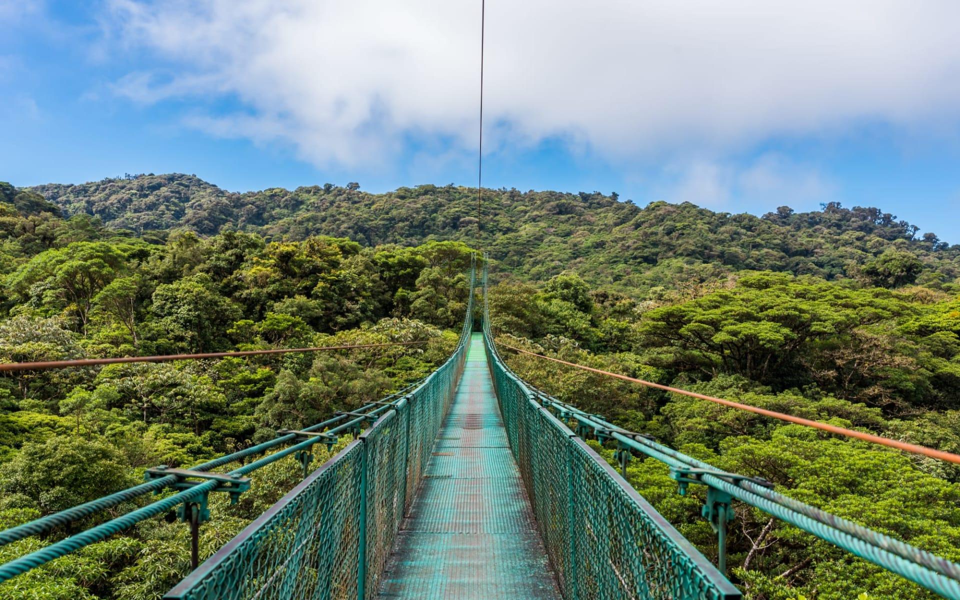 Privatreise Zwischen zwei Ozeanen ab San José City: Costa Rica - Monteverde - hängende Brücke