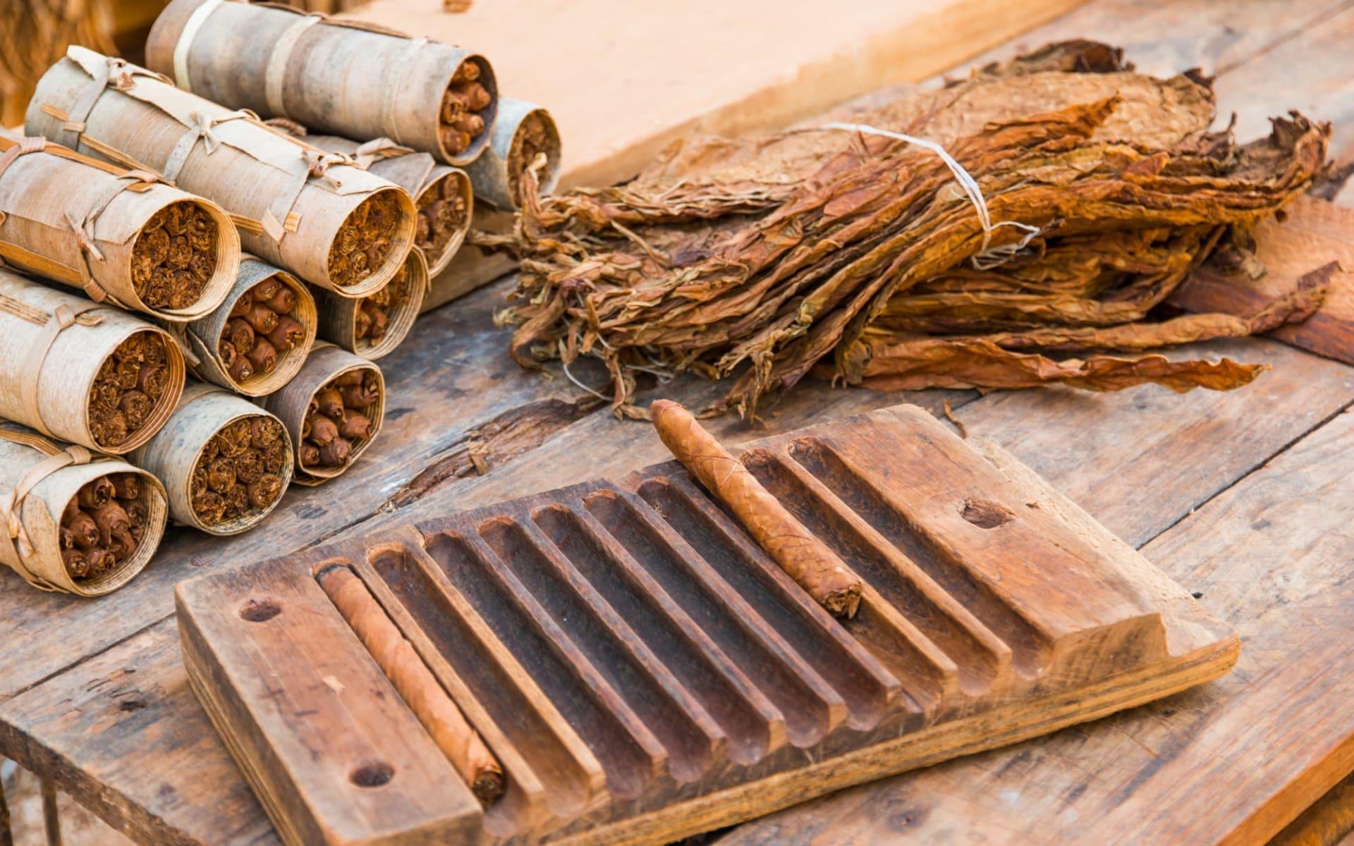 Kuba für kleine Entdecker ab Havanna: Cuba - Vinales - Tabak