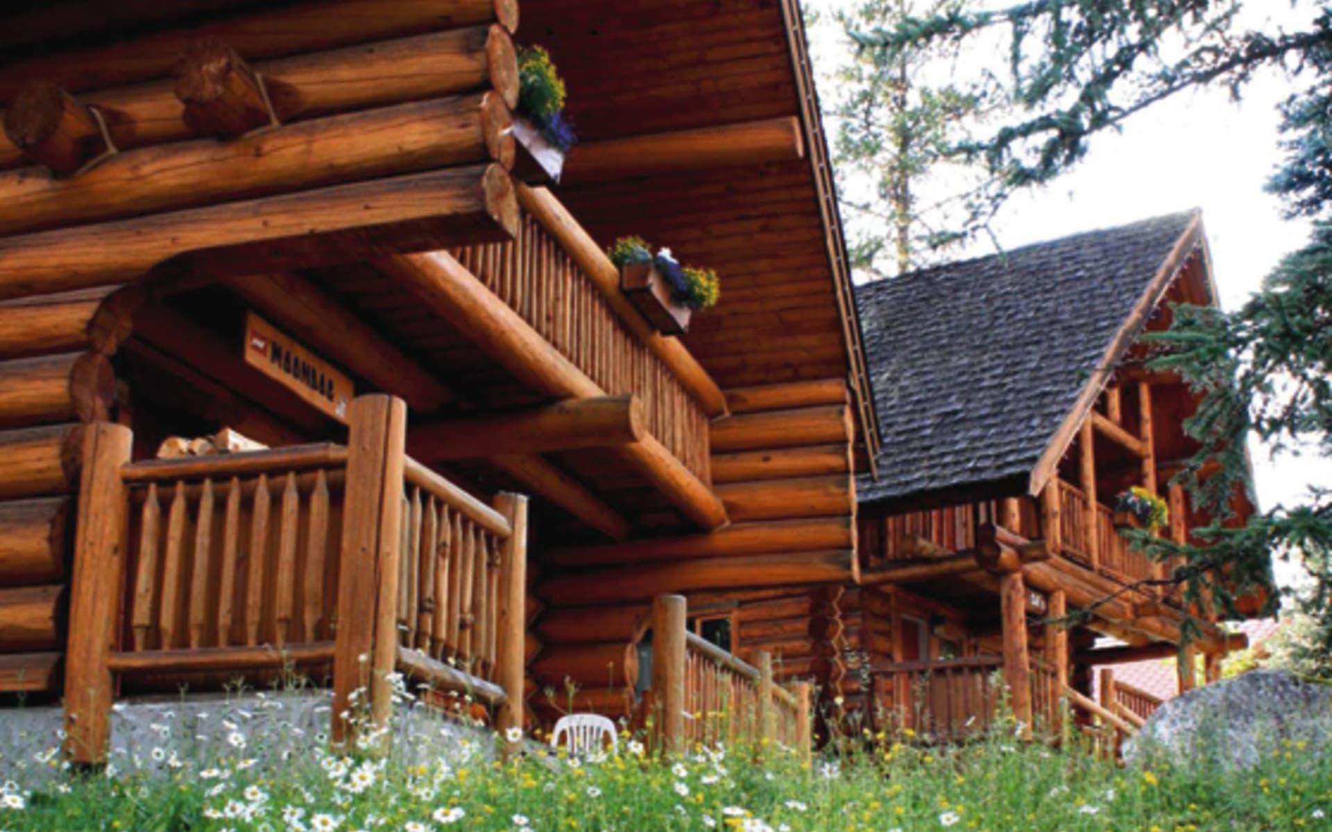 Mike Wiegele Resort in Blue River: 2011_164_02_mike wiegele resort