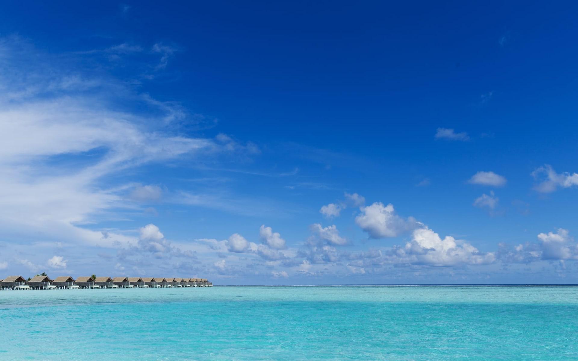 Niyama Private Islands Maldives in Dhaalu-Atoll: