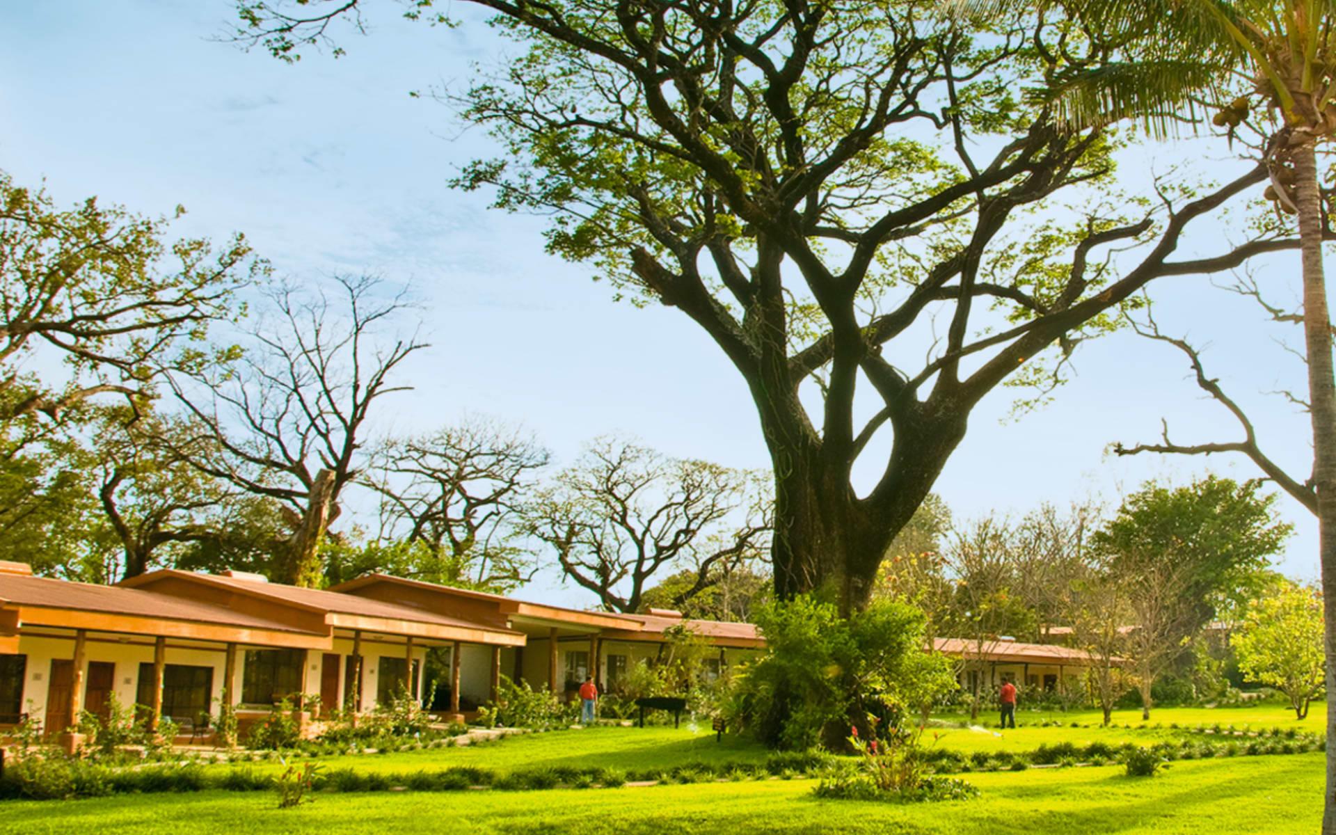 Hacienda Guachipelín in Rincón de la Vieja: exterior hacienda guachipelin wiese bäume