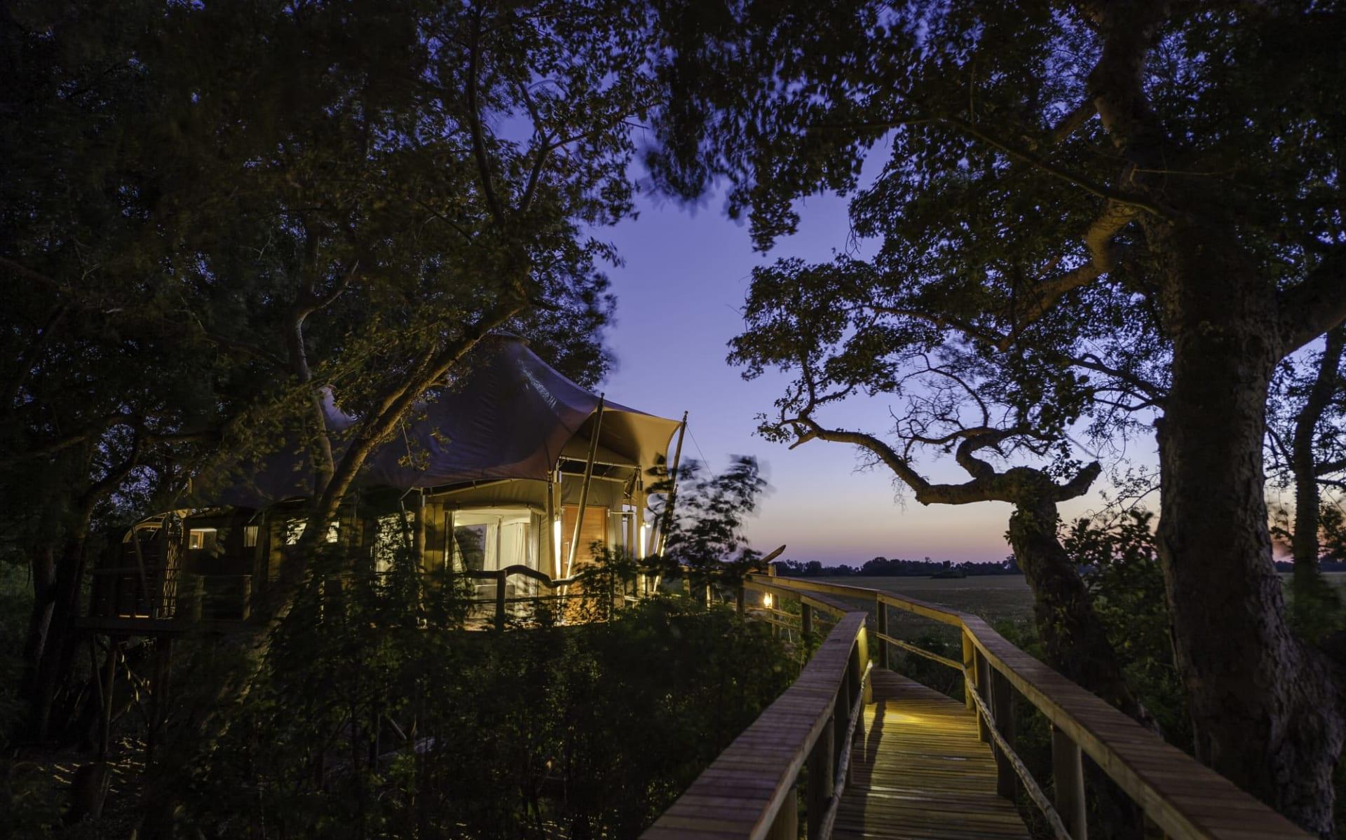 Kwetsani Camp in Okavango Delta:  Kwetsani Camp