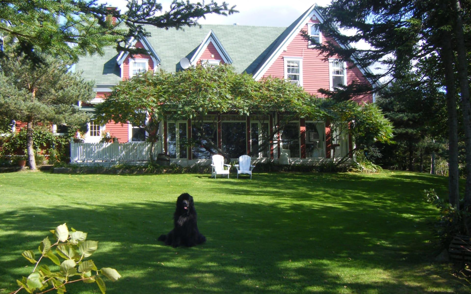 Little Shemogue Inn: exterior_Little Shemogue Country Inn_FromGarden
