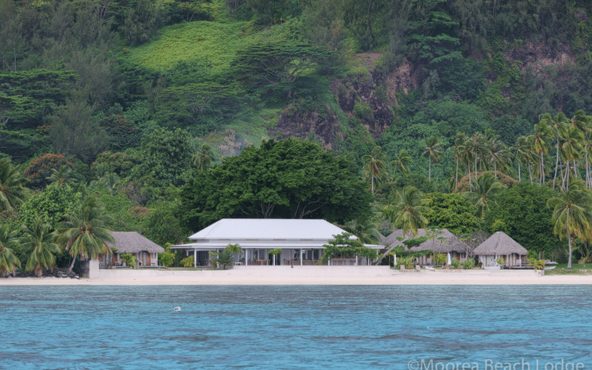 Moorea Beach Lodge:  Moorea Beach Lodge (2)