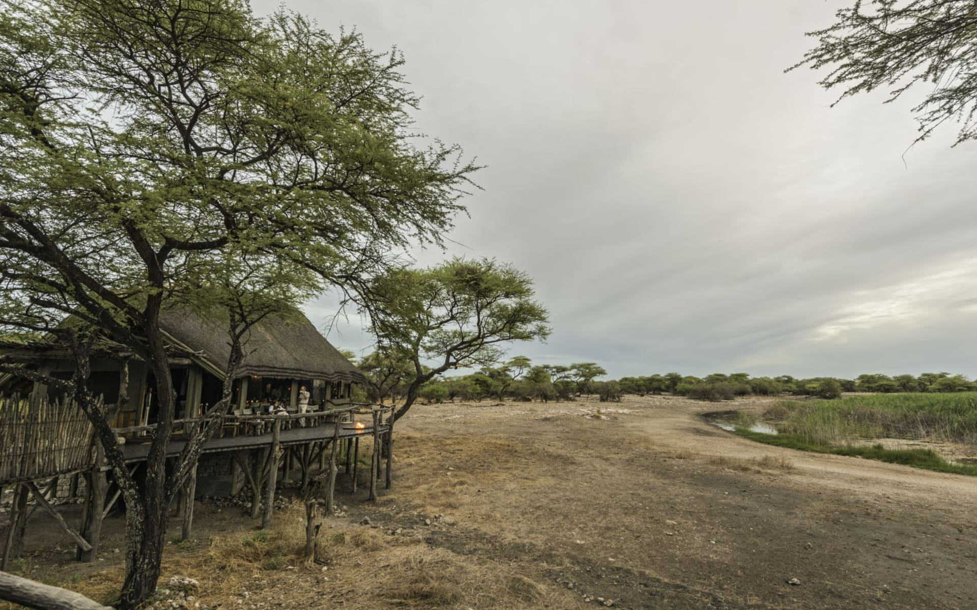 Onguma Tree Top Camp in Etosha Nationalpark:  Onguma Tree Camp_0354
