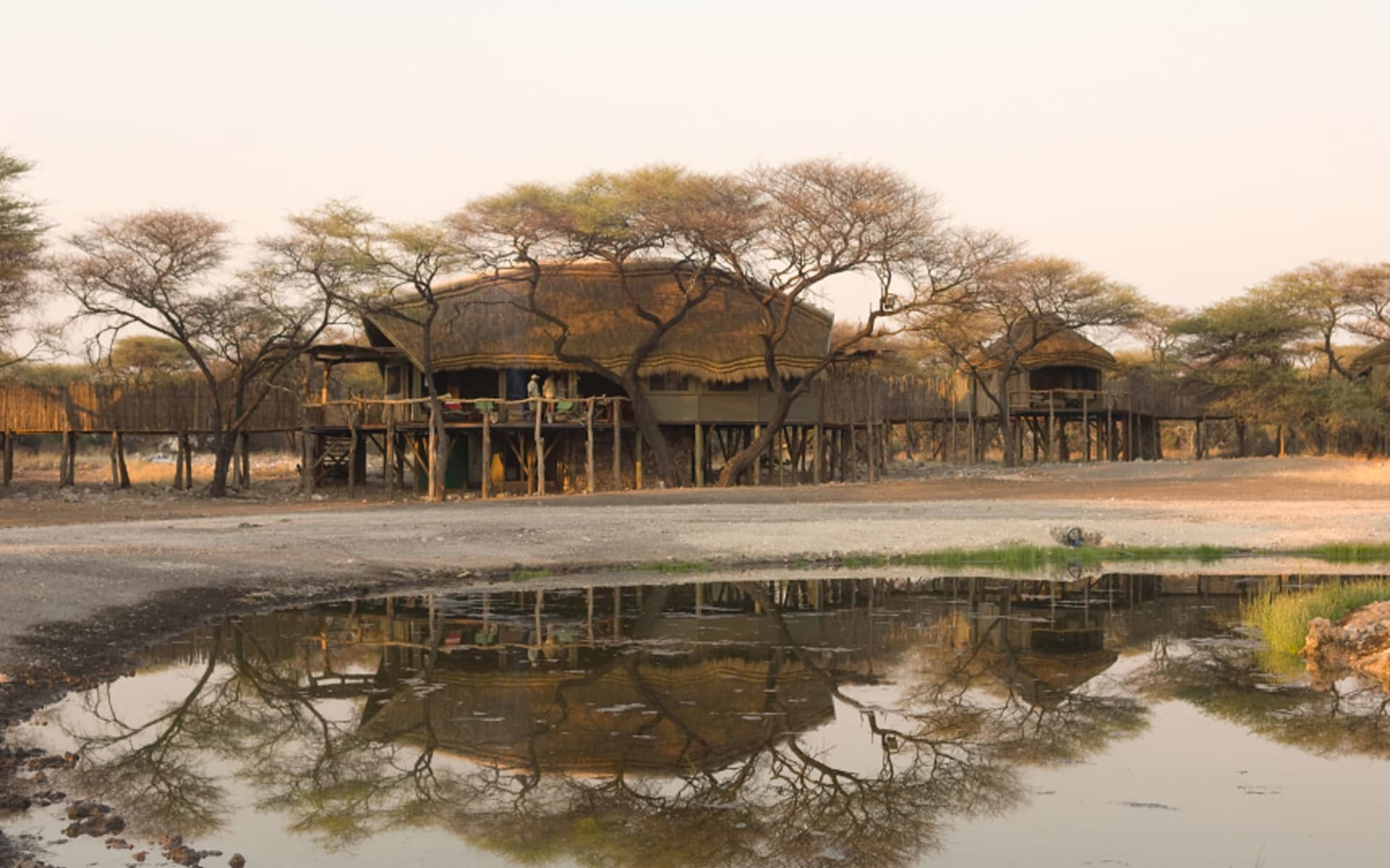 Onguma Tree Top Camp in Etosha Nationalpark: ONGUMA TREE TOP MAIN COMPLEX