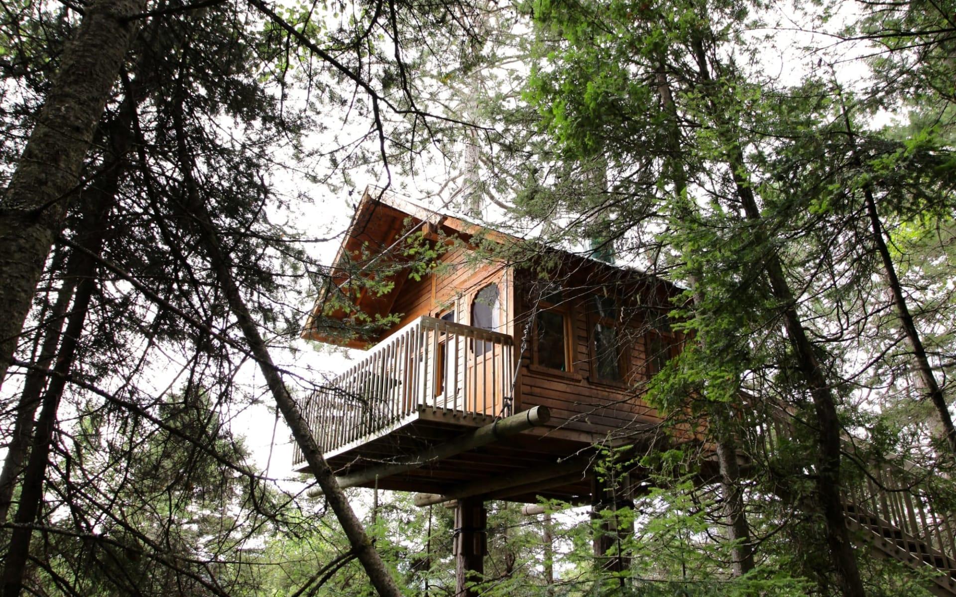 Baumhaus-Abenteuer ab Chicoutimi: exterior: Parc aventure Cap Jaseux - Hotel von aussen