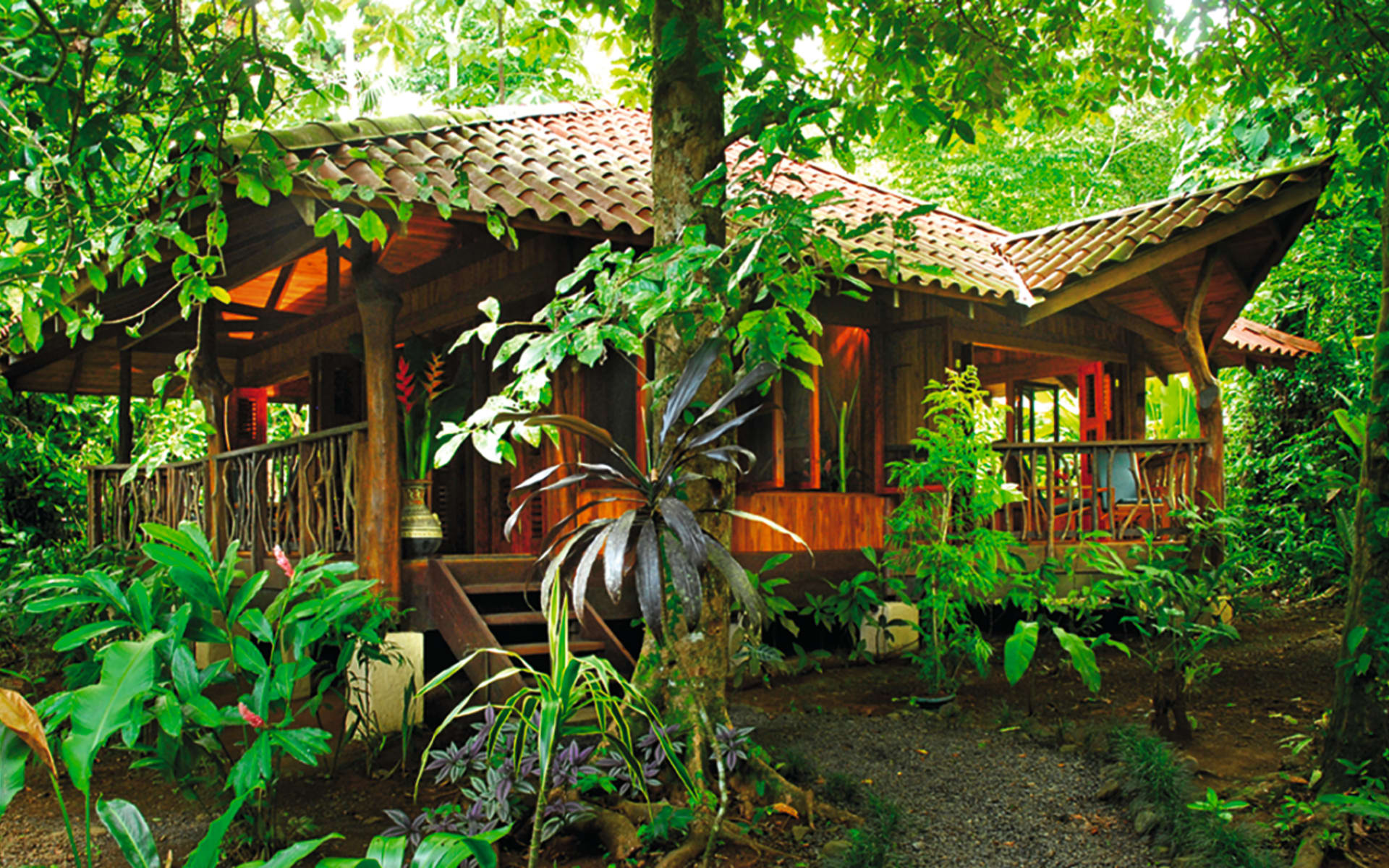 Playa Nicuesa Rainforest Lodge in Golfito: exterior playa nicuesa hütte jungle