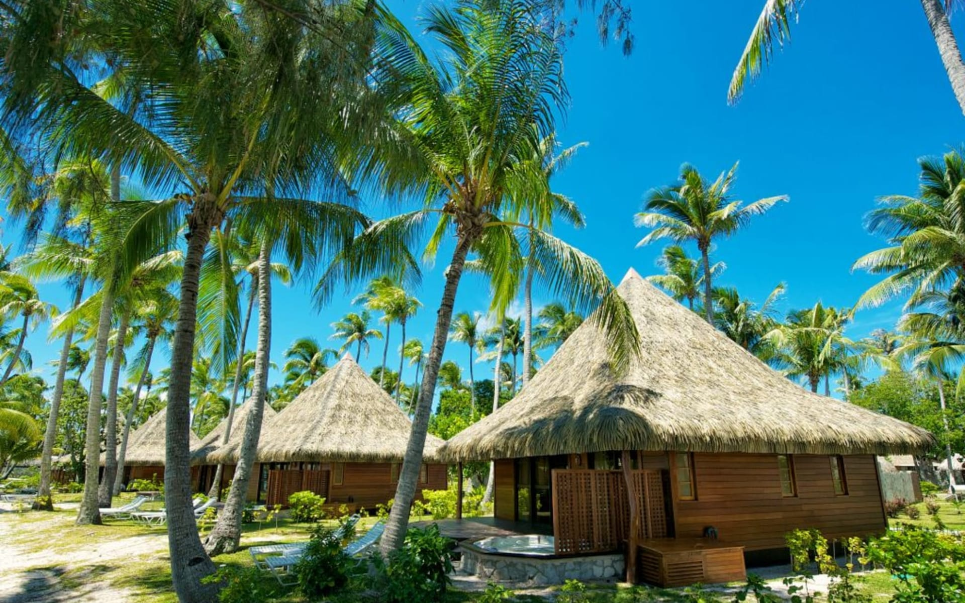 Kia Ora Resort & Spa in Rangiroa:  RGI Kia Ora_Beach Bungalow_Tim Mckenna.gallery_image.11