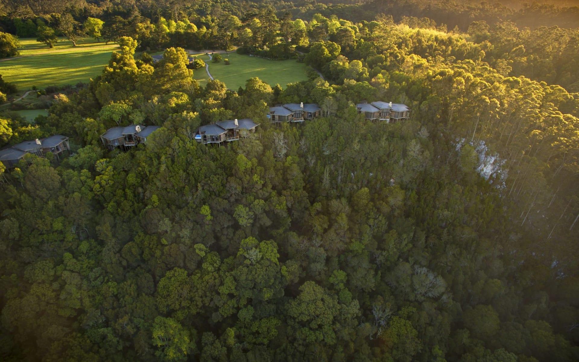 Tsala Treetop Lodge in Plettenberg Bay:  Tsala - Aerial View
