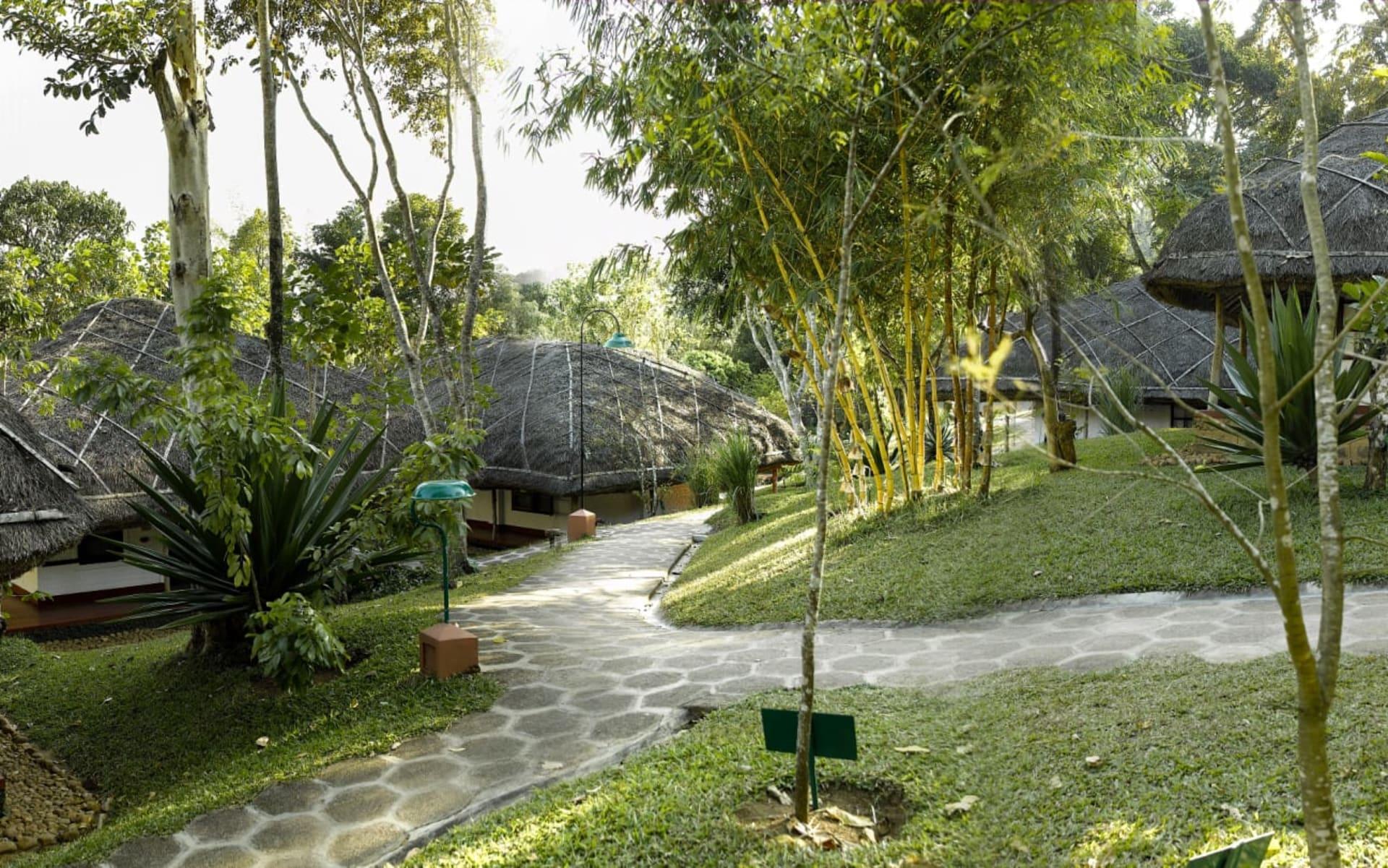 Spice Village in Thekkady: Walkways
