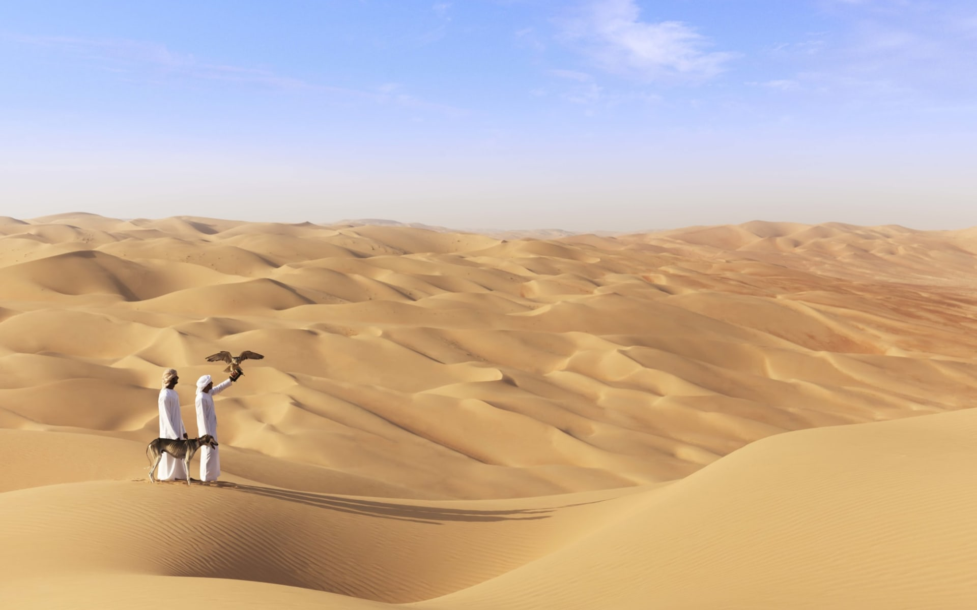 Schätze Abu Dhabis ab Dubai: activities: