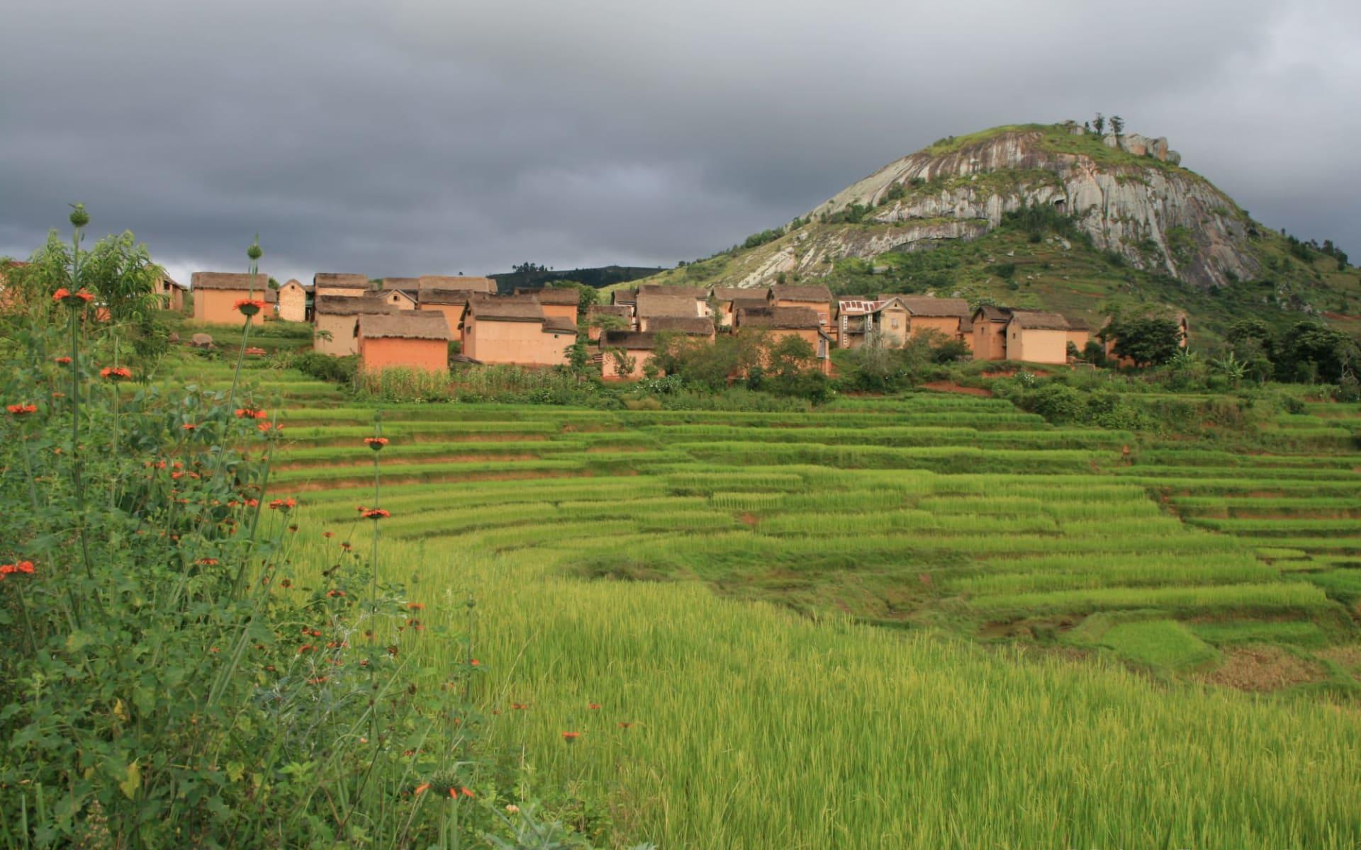 Den Süden entdecken ab Antananarivo: Fianarantsoa