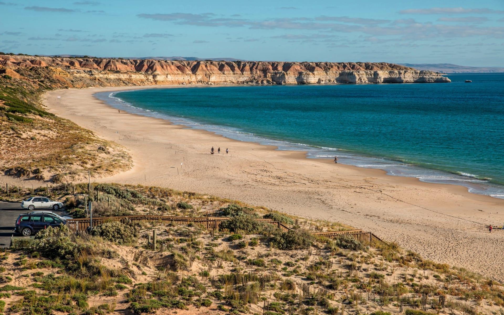 Lifestyle, Wine & Wildlife ab Adelaide: Fleurieu Peninsula