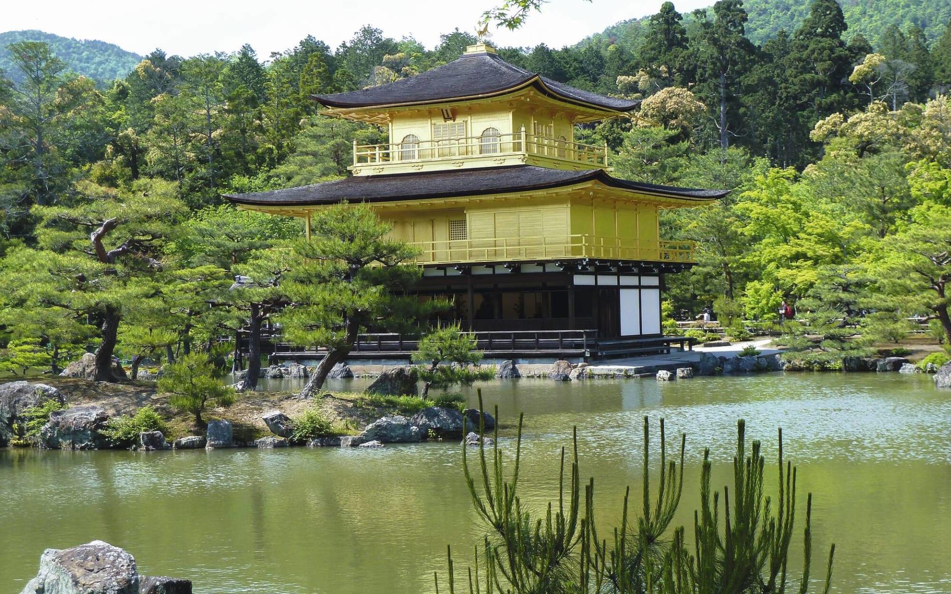 Leserreise Luzerner Zeitung / Reise ins Land der aufgehenden Sonne ab Tokio: Japan