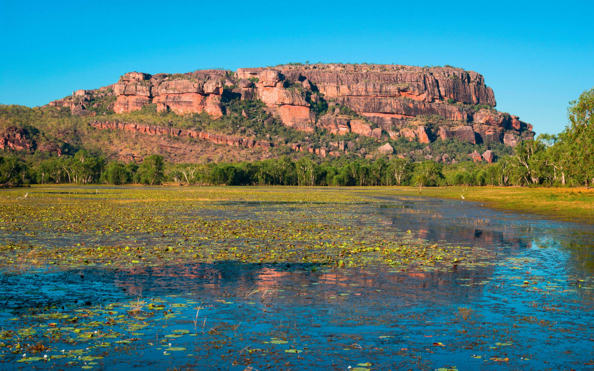 Kakadu & Litchfield National Parks (AAT Kings) ab Darwin: Kakadu National Park - Nourlangie Rock