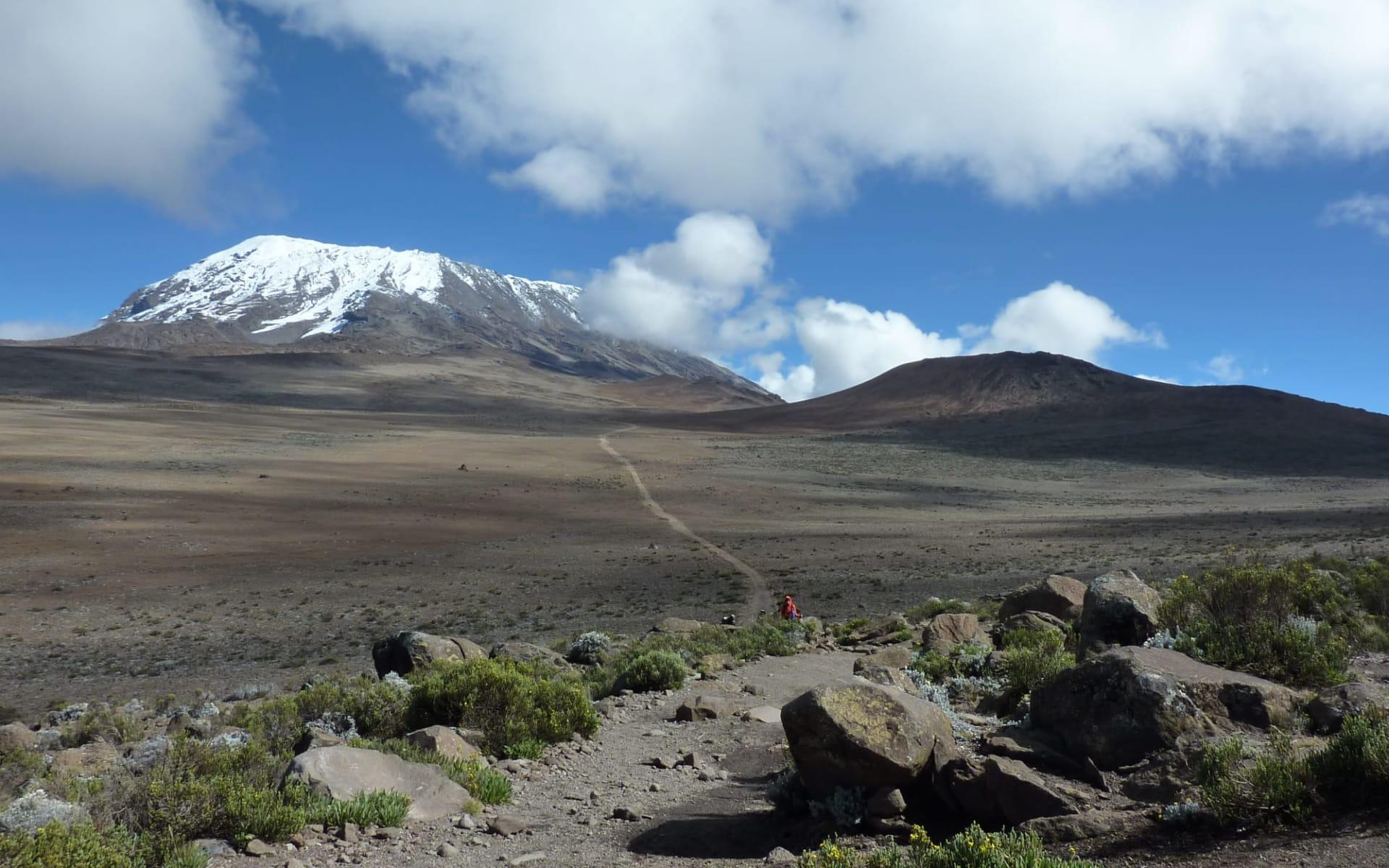 Kilimanjaro Marangu Route ab Arusha: Kili Marangu