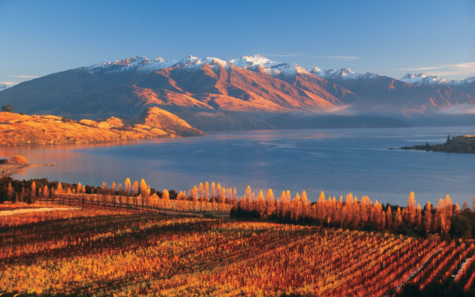 New Zealand South Island Discovery ab Queenstown: Lake Wanaka - Sonnenlicht