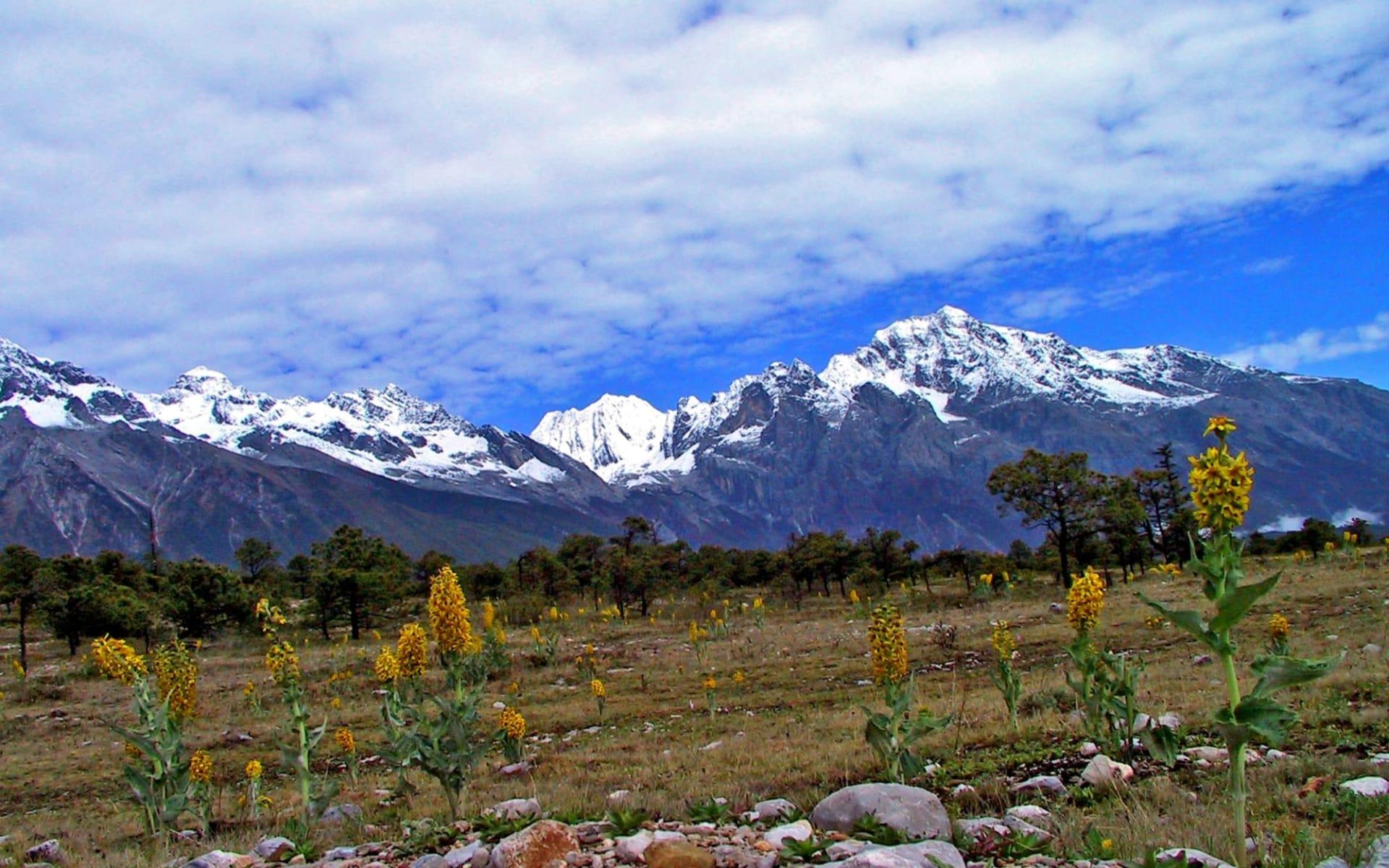 Höhepunkte Yunnans ab Kunming: Lijiang: Snow Mountain