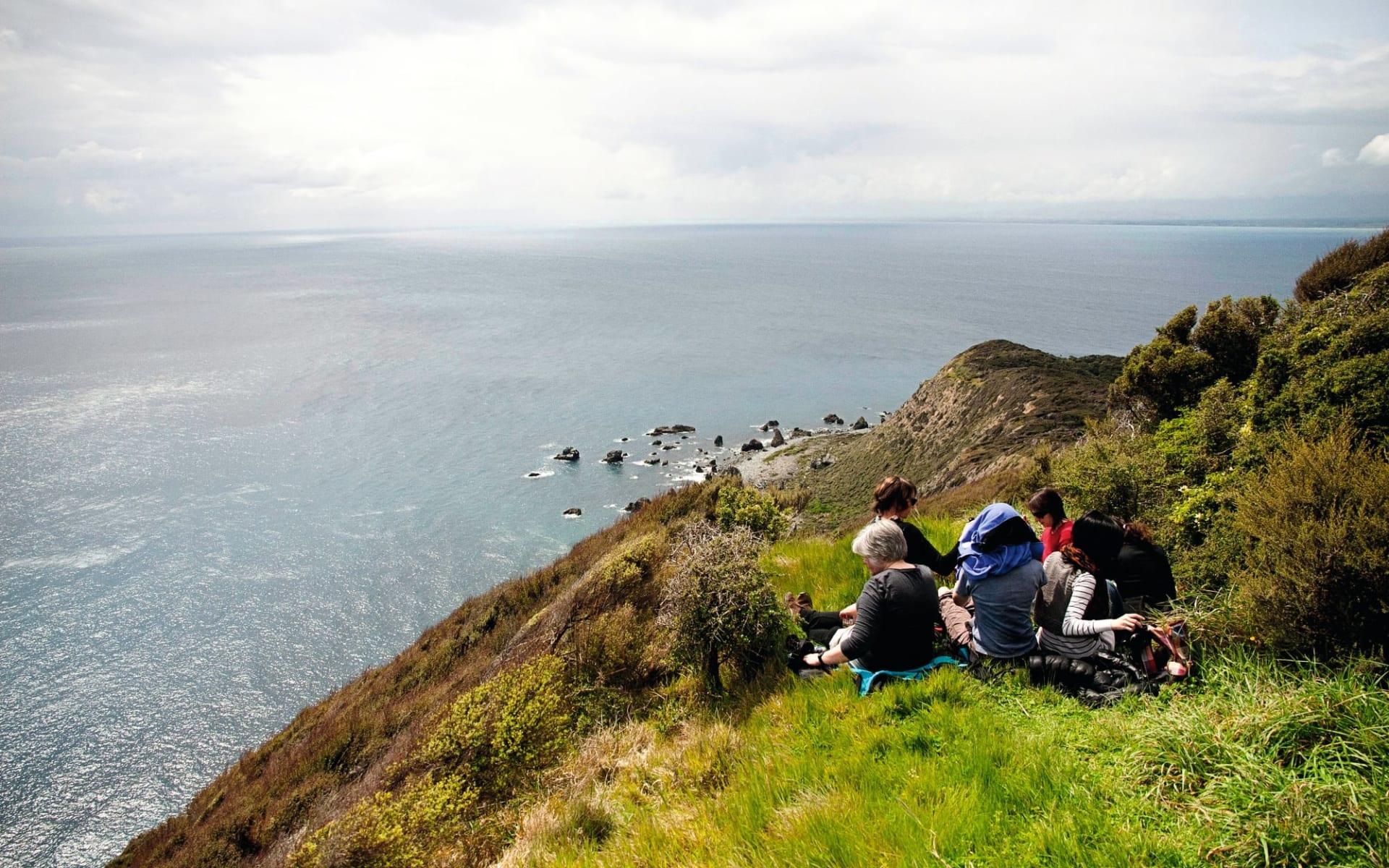 Kapiti Island Nature Tours:  Natur Kapiti Island Nature Tours Kapiti Island Neuseeland - Blick auf Gruppe auf einer Klippe 2017