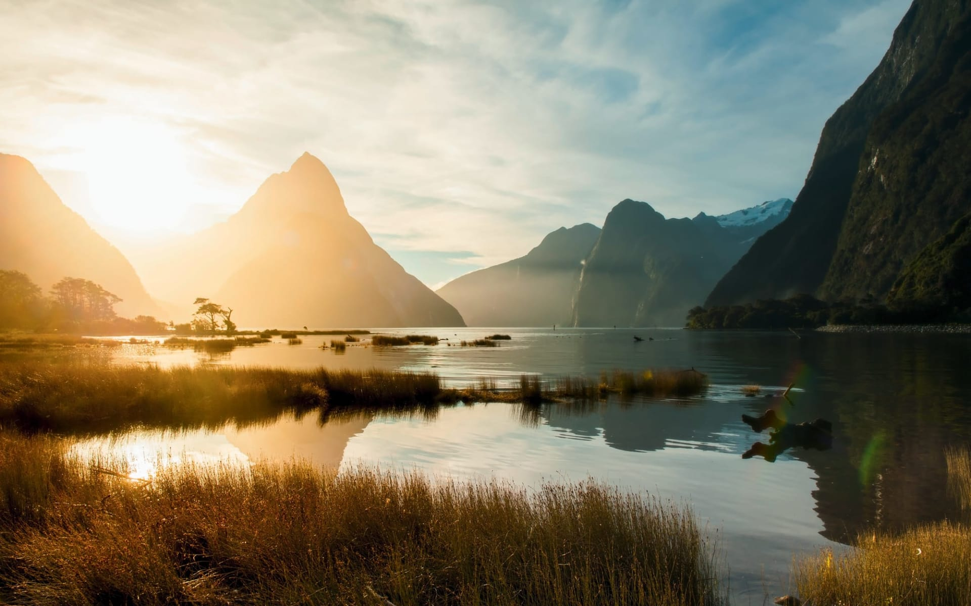 Milford Sound Overnight Cruise ab Queenstown: Milford Sound