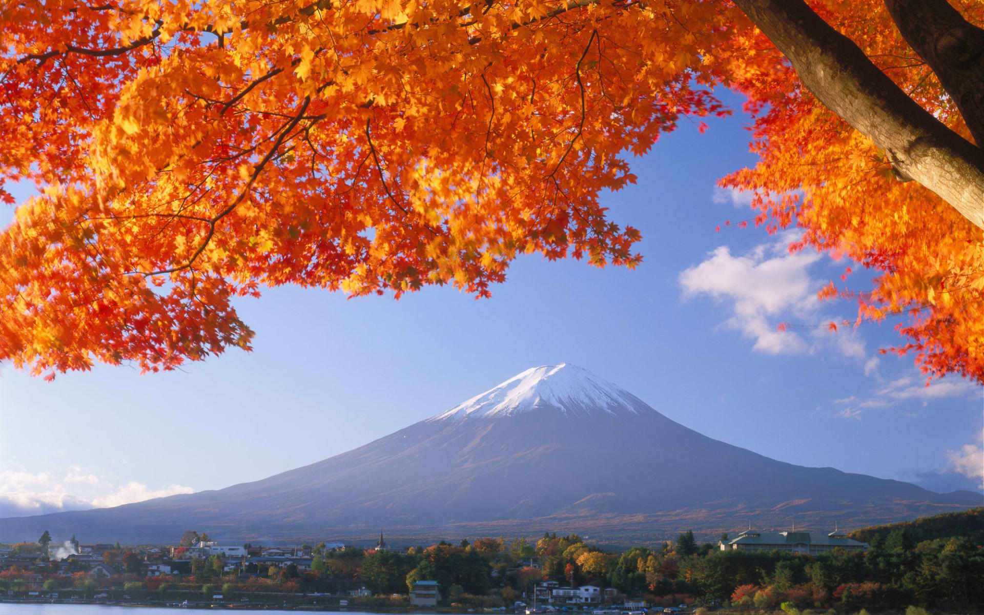Mt. Fuji Trekking (Nebensaison) ab Tokio: Mt. Fuji: autumn colours