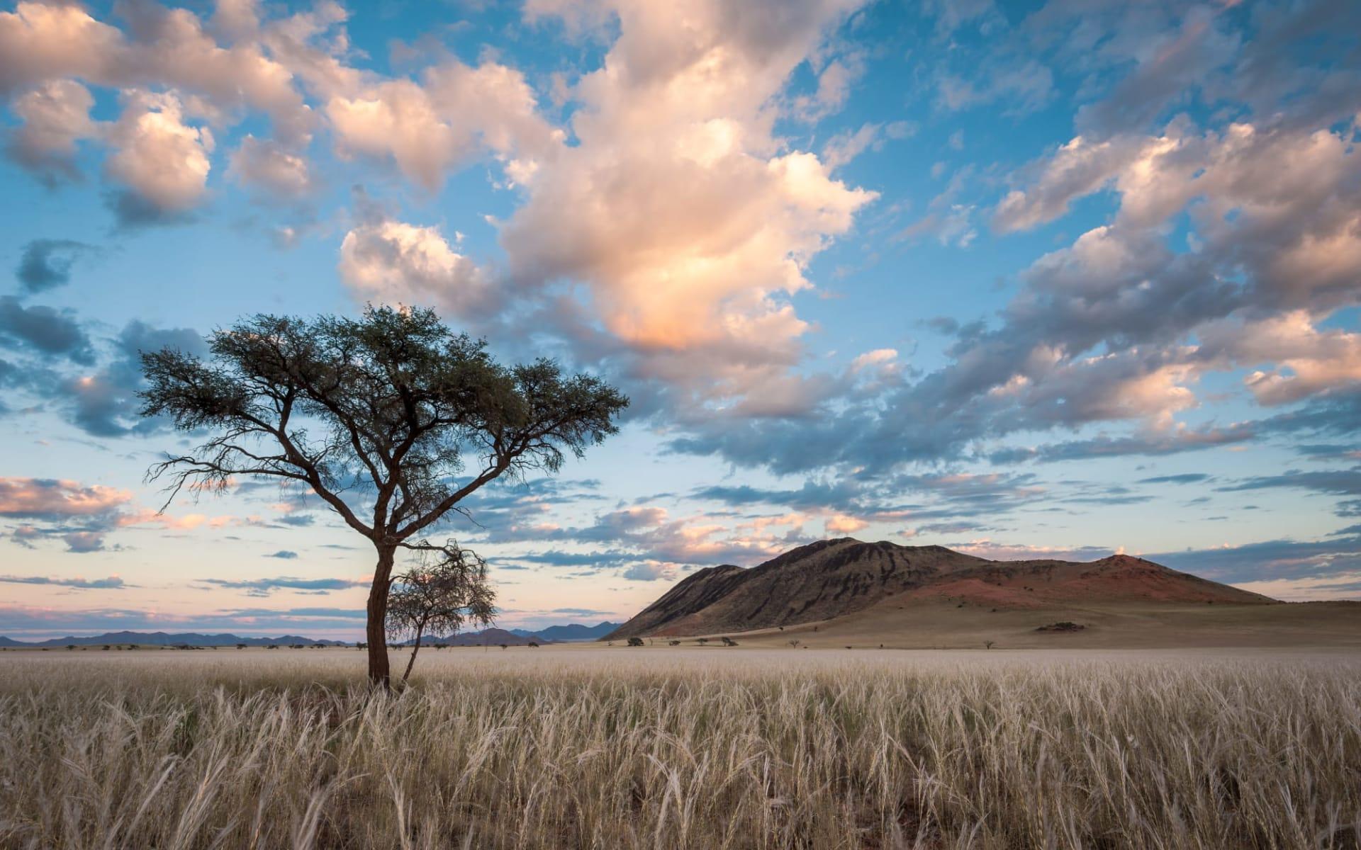 Greenfire Desert Lodge in NamibRand Nature Reserve: Namibia Sossusvlei, Morgenstimmung