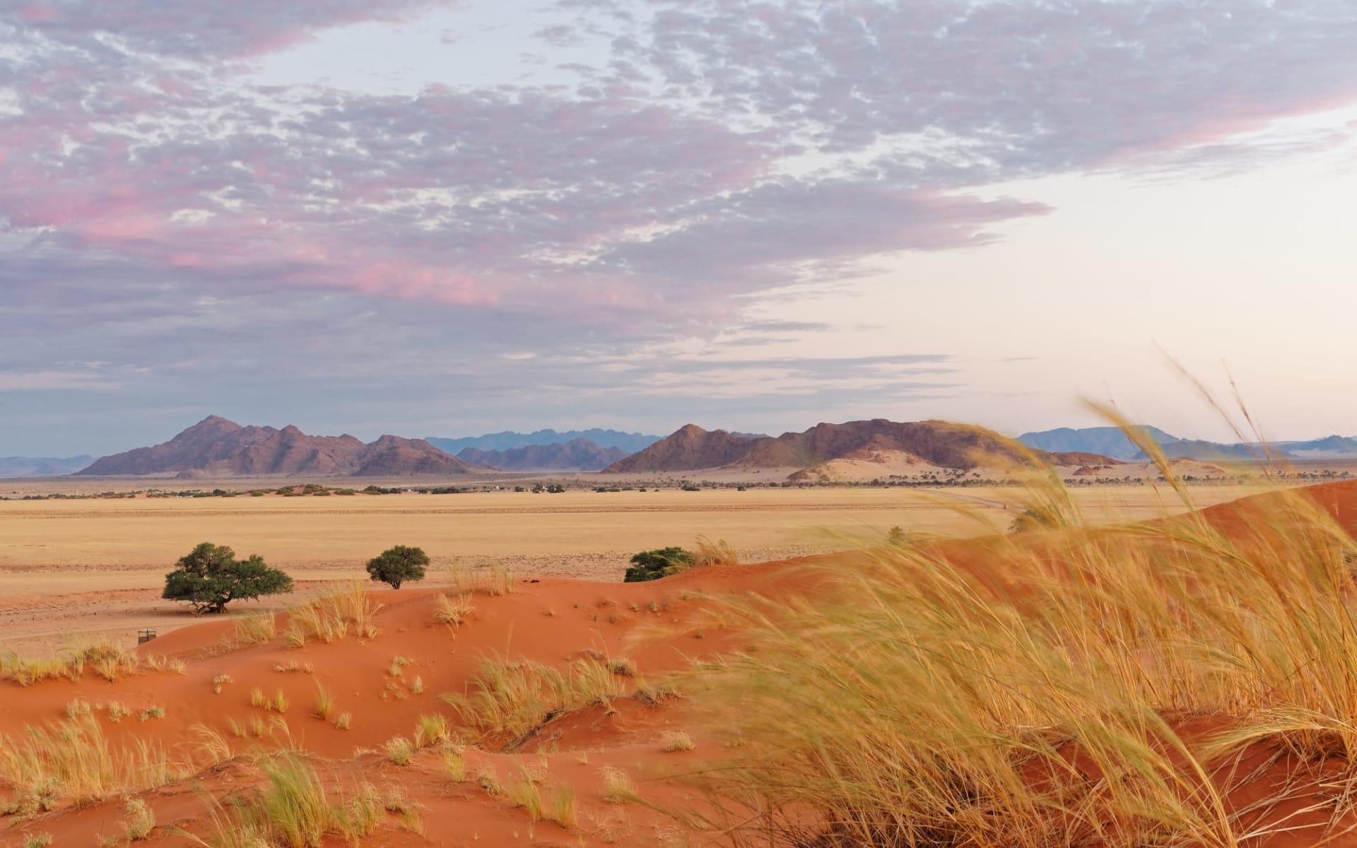 The Elegant Desert Lodge in Sesriem: Namibia Sossusvlei, Sonnenuntergang Elim Dunes