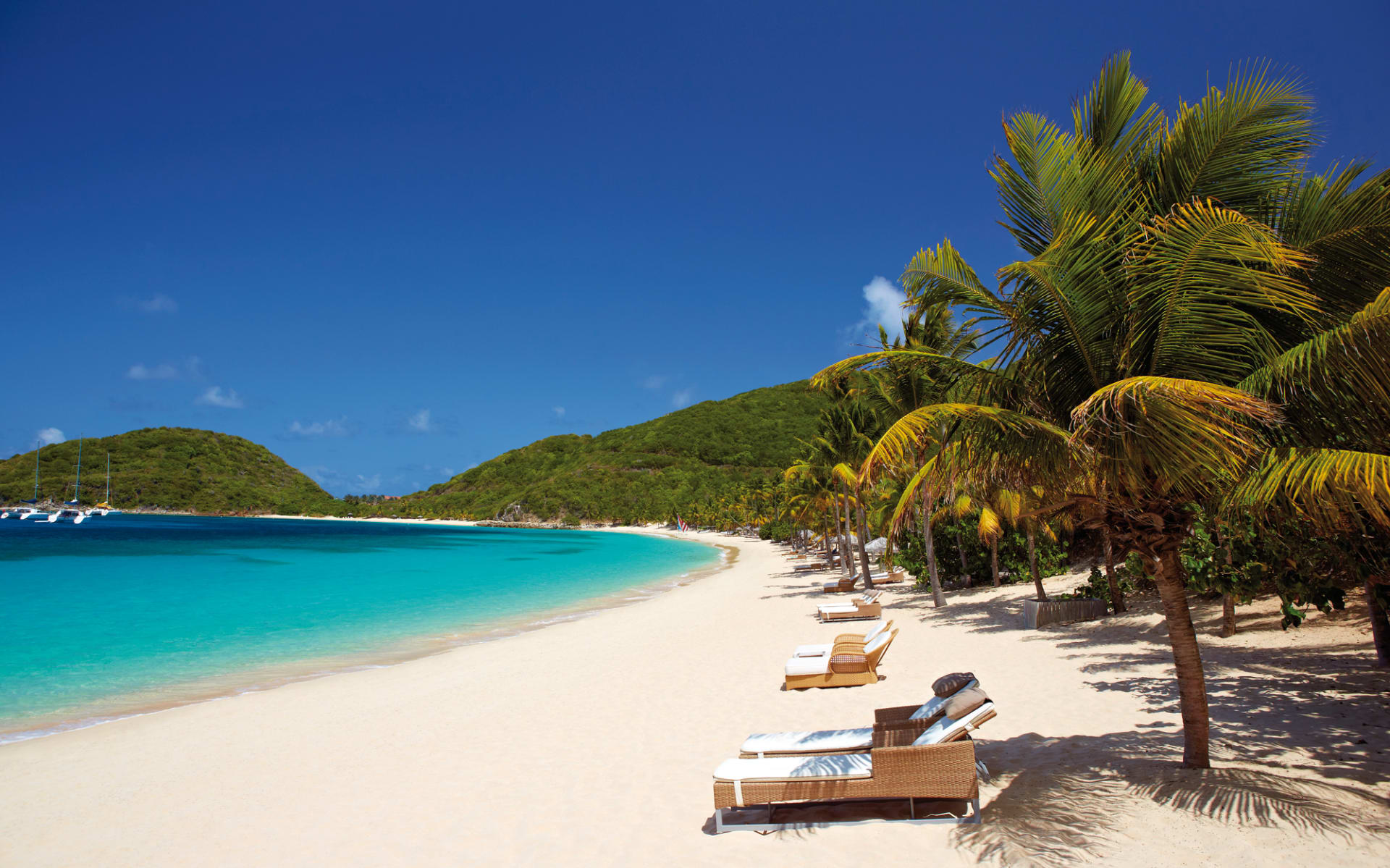 Peter Island Resort & Spa: natur peter island resort strand palmen
